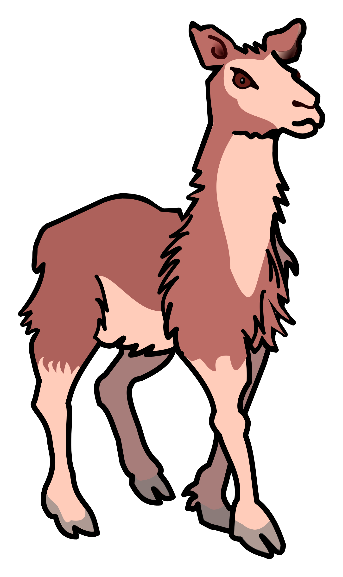 llama - coloured by frankes