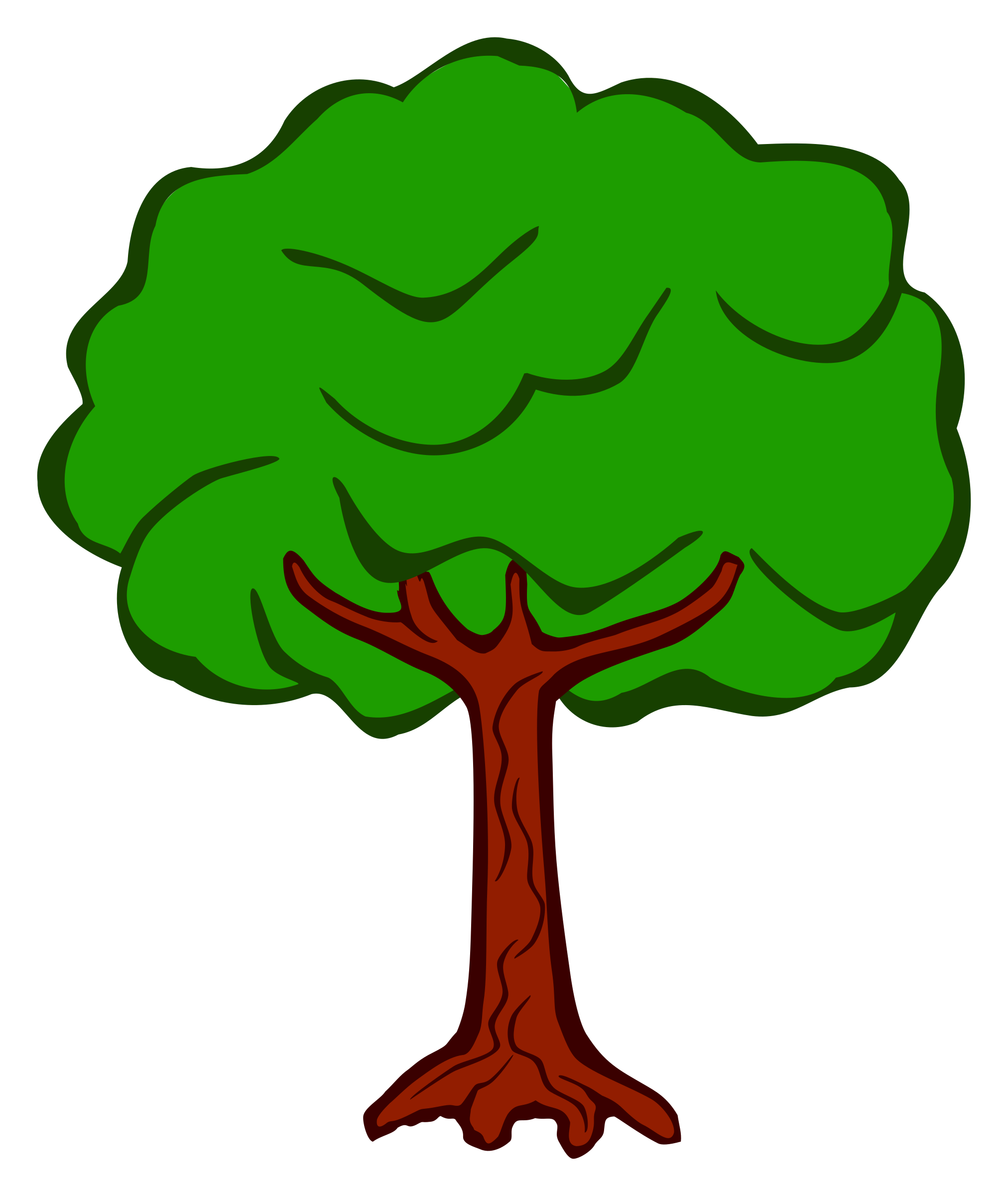 tree - coloured by frankes