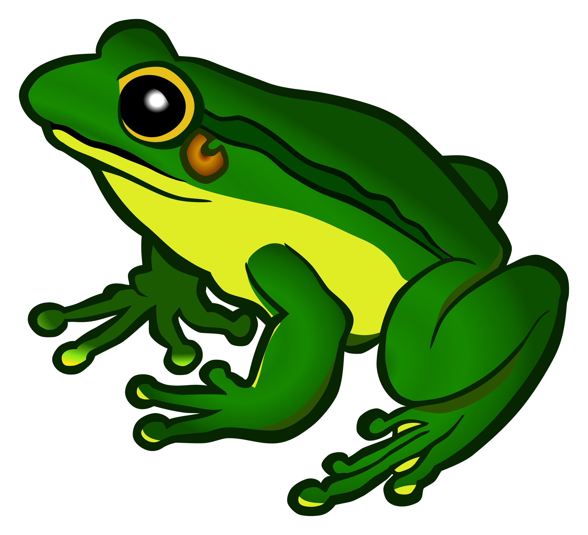 frog - coloured by frankes