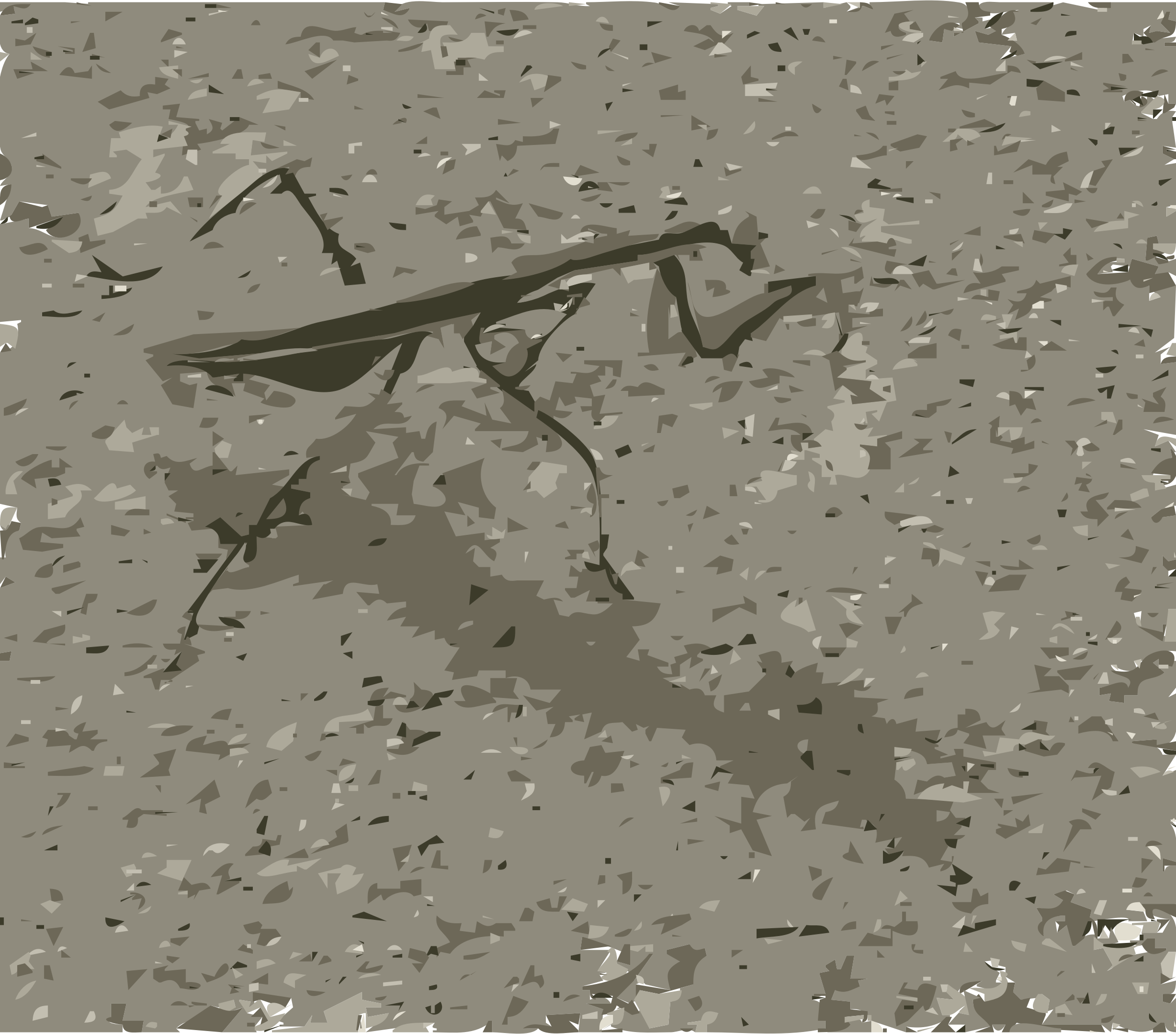 Praying Mantis by EdR