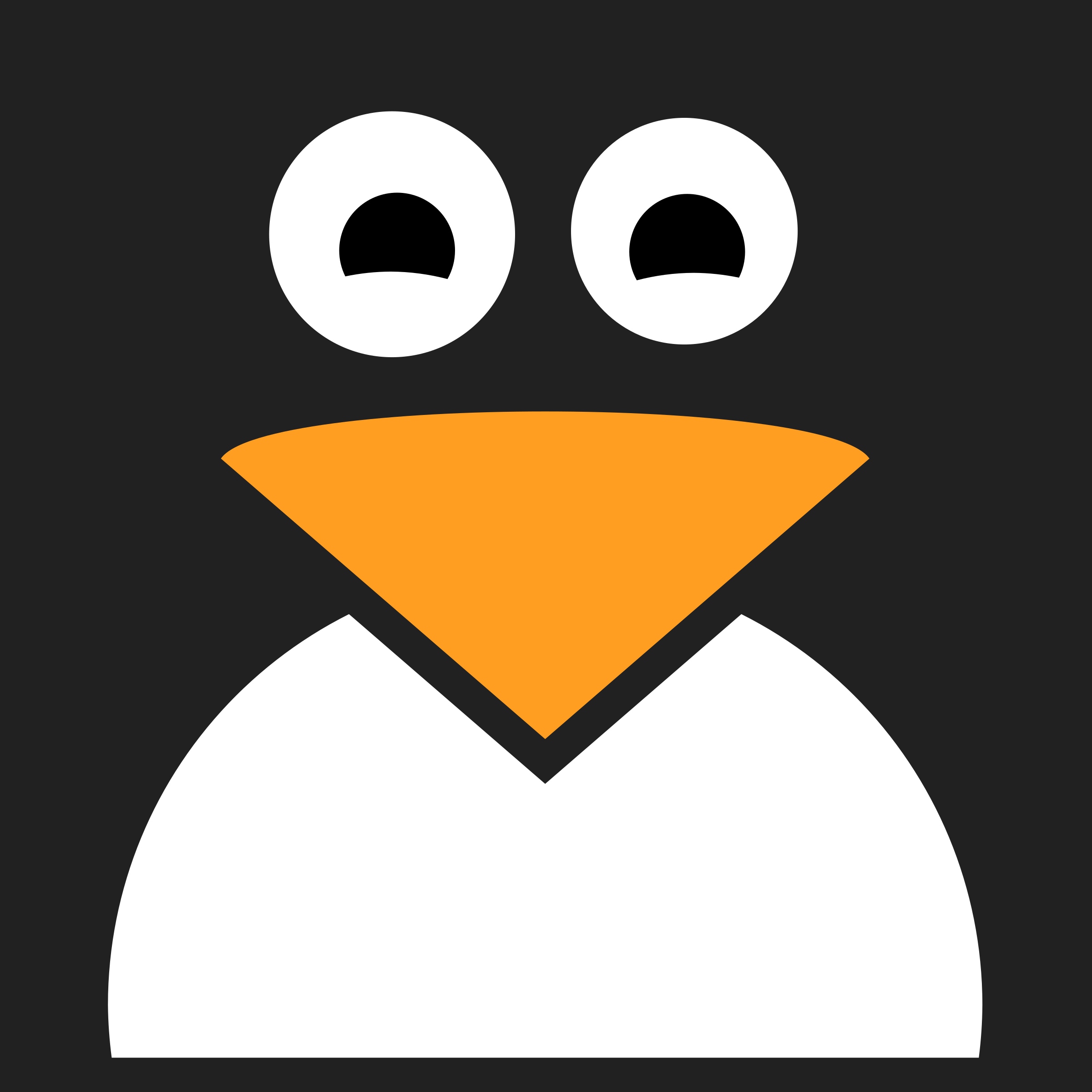 Penguin Icon by qubodup