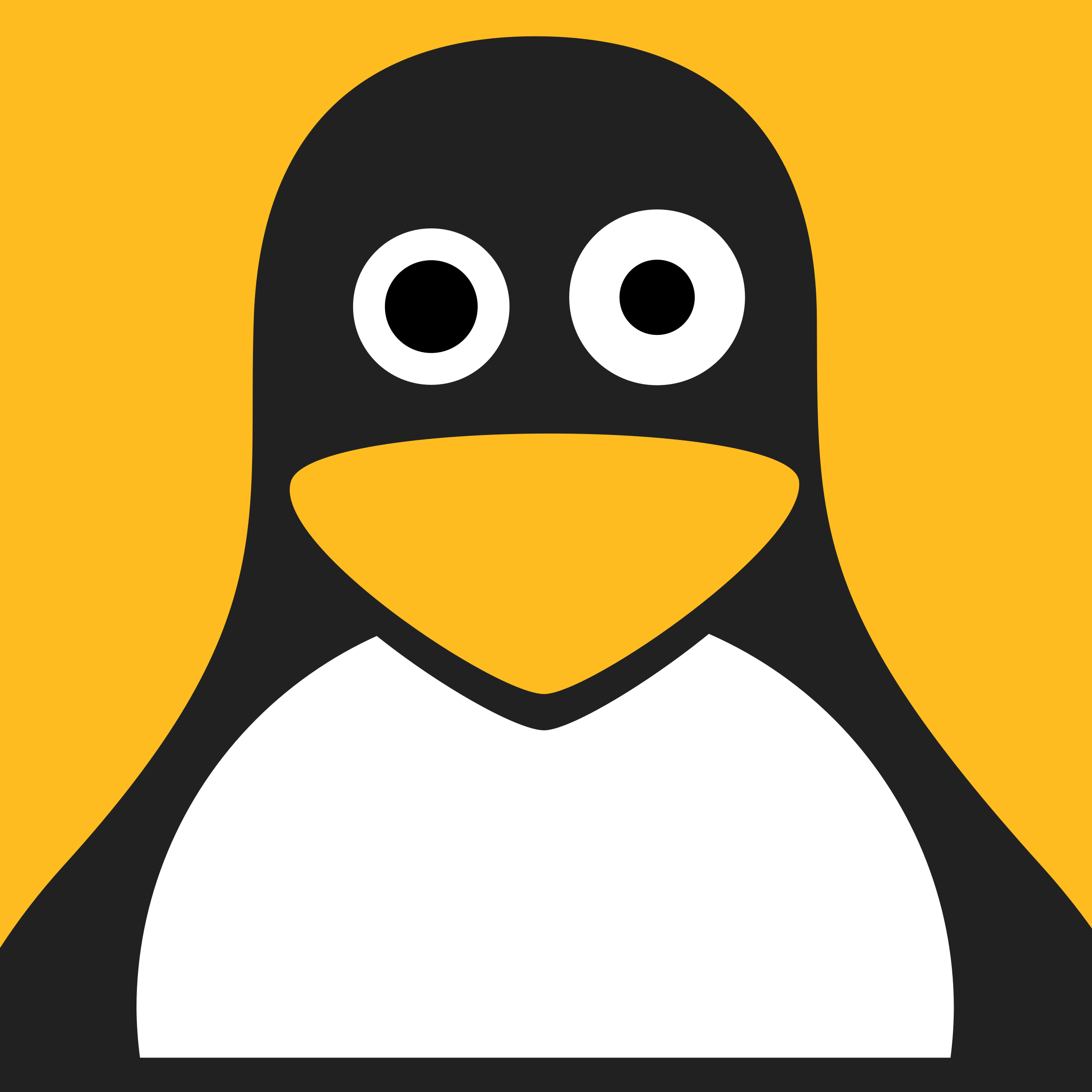 Confused Linux by qubodup