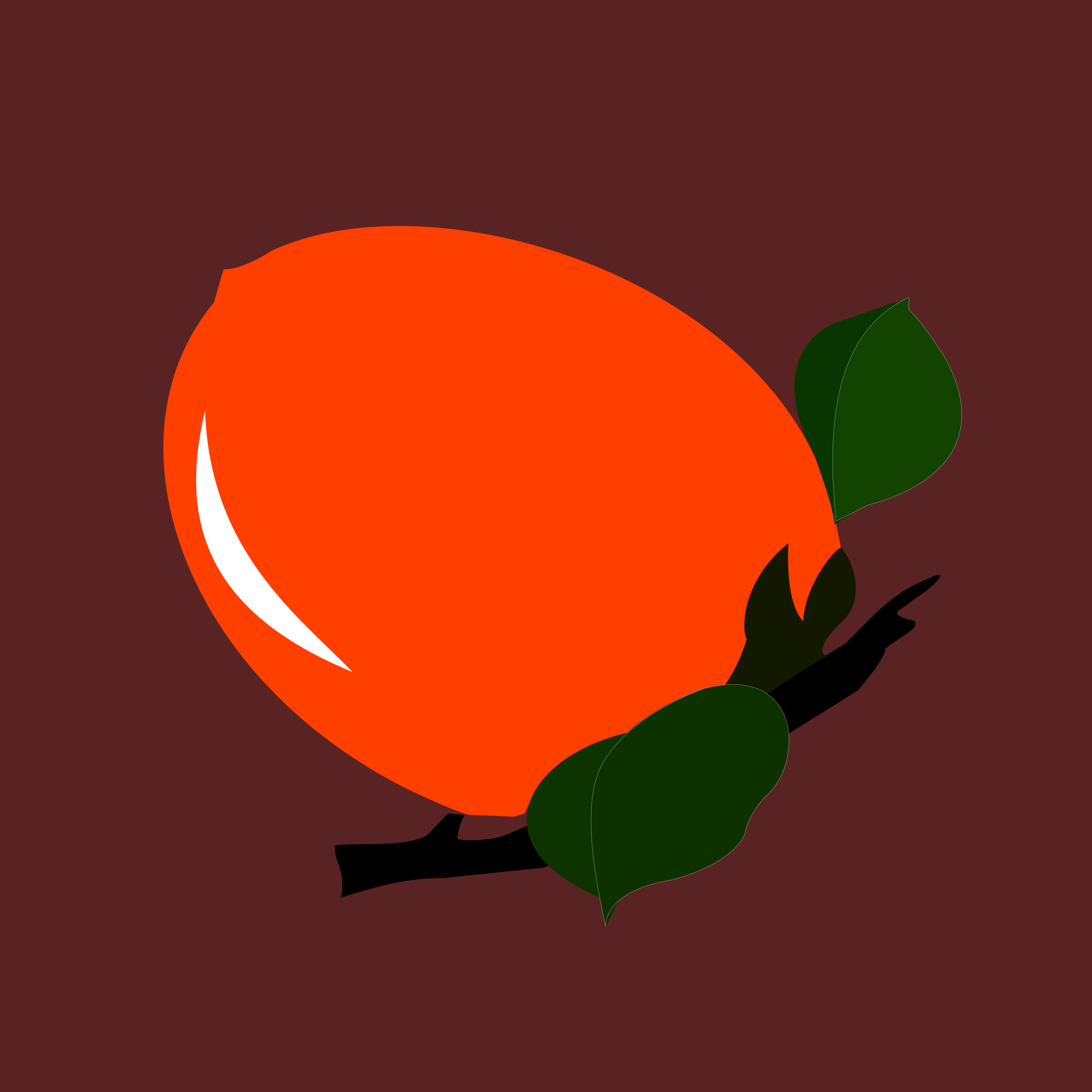 persimmon by yamachem