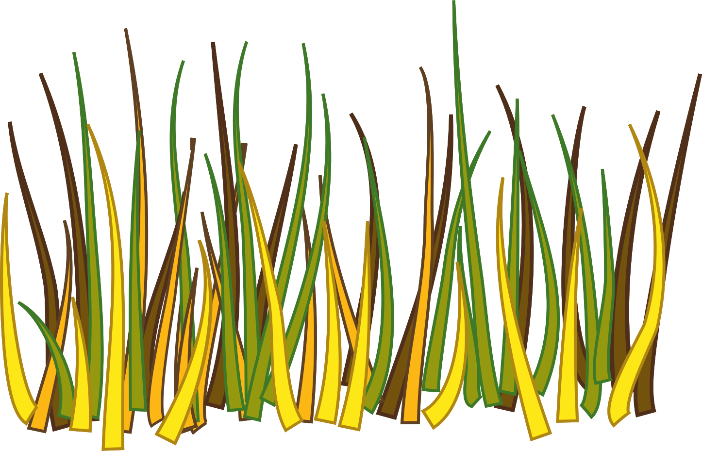 Grass by Fractalbee
