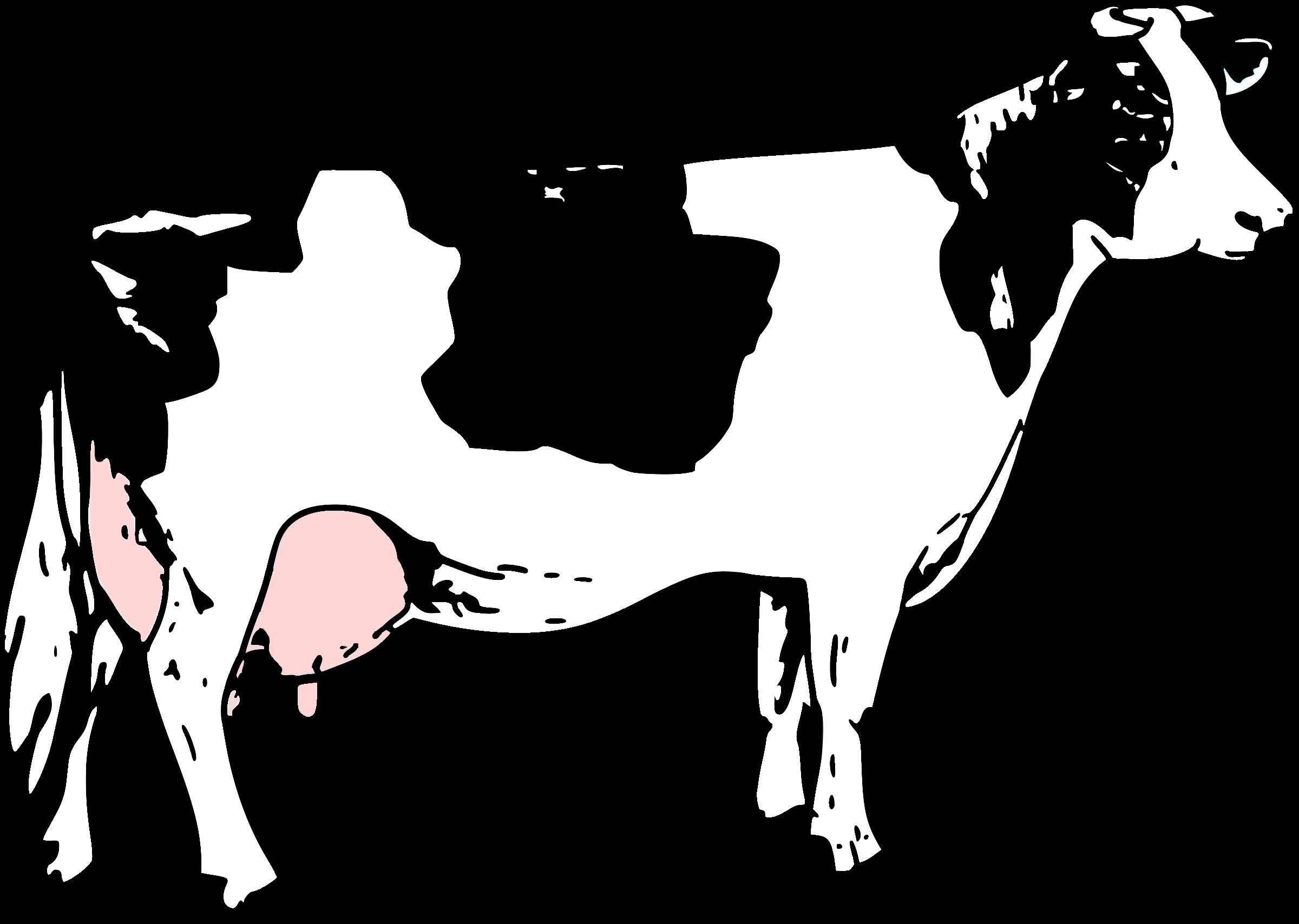 microsoft clip art cow - photo #20