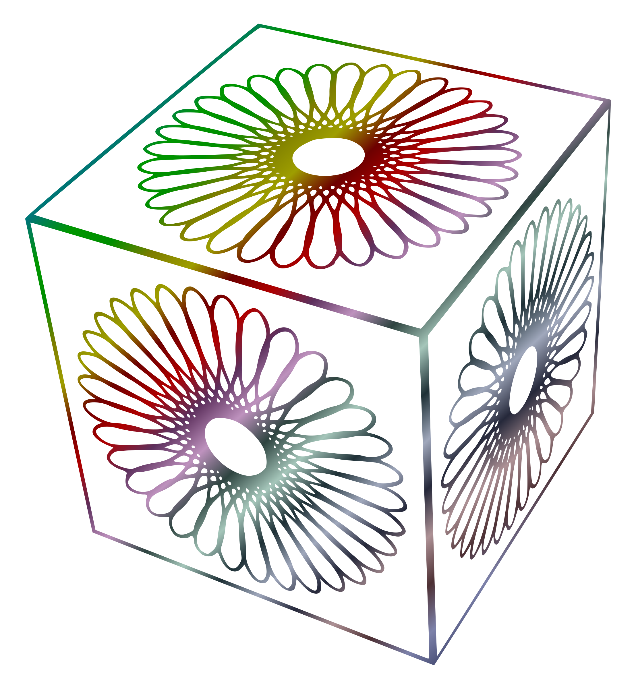Spirograph Cubed by Arvin61r58