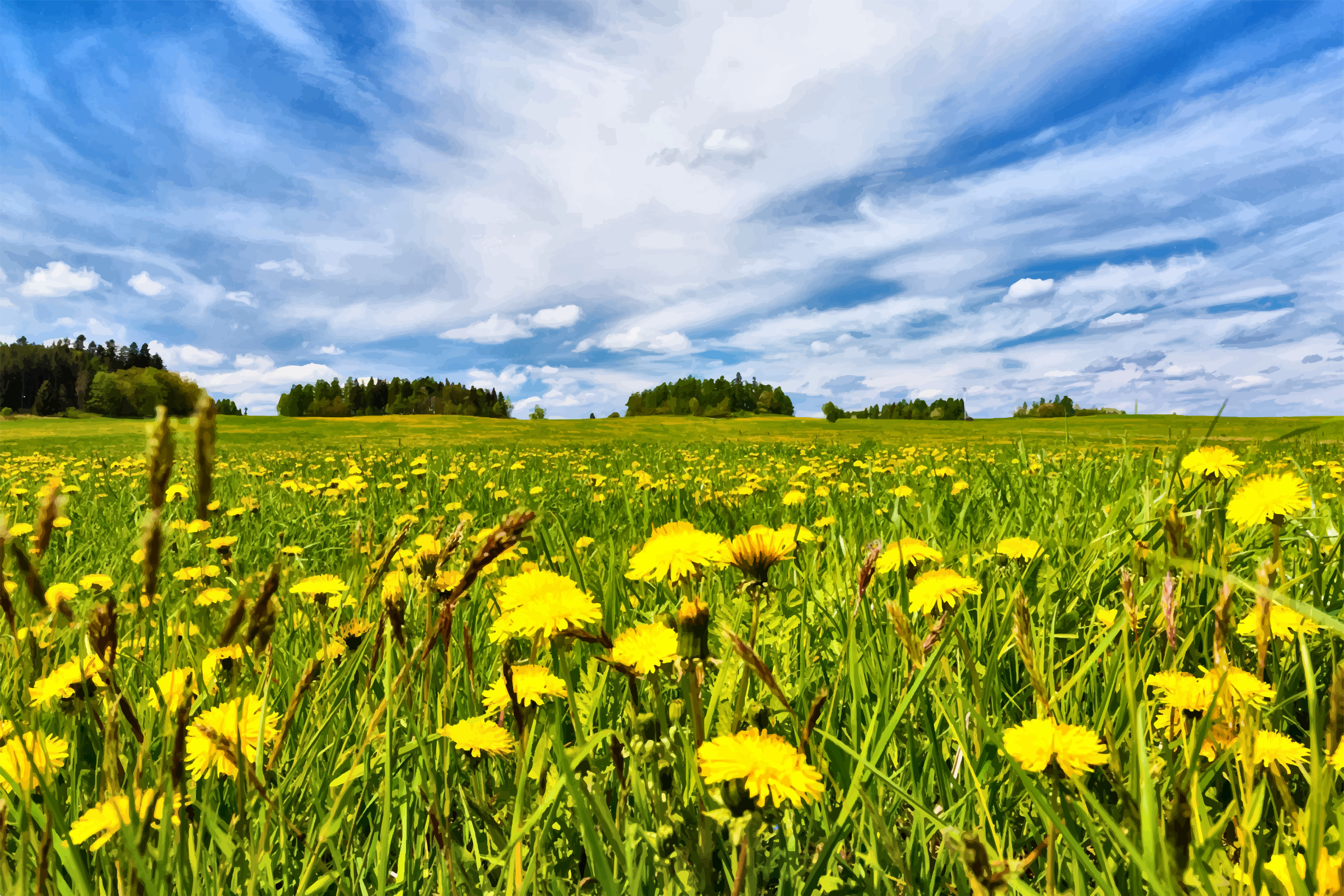 Dandelion Field In Spring moreover Penthouse moreover Forrestbrown Launches London Office At Wework Moorgate also Wardrobes further Vision Statement. on open office space