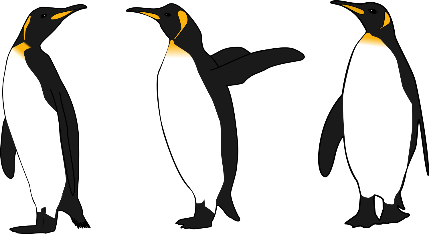 Three King Penguins by argumento