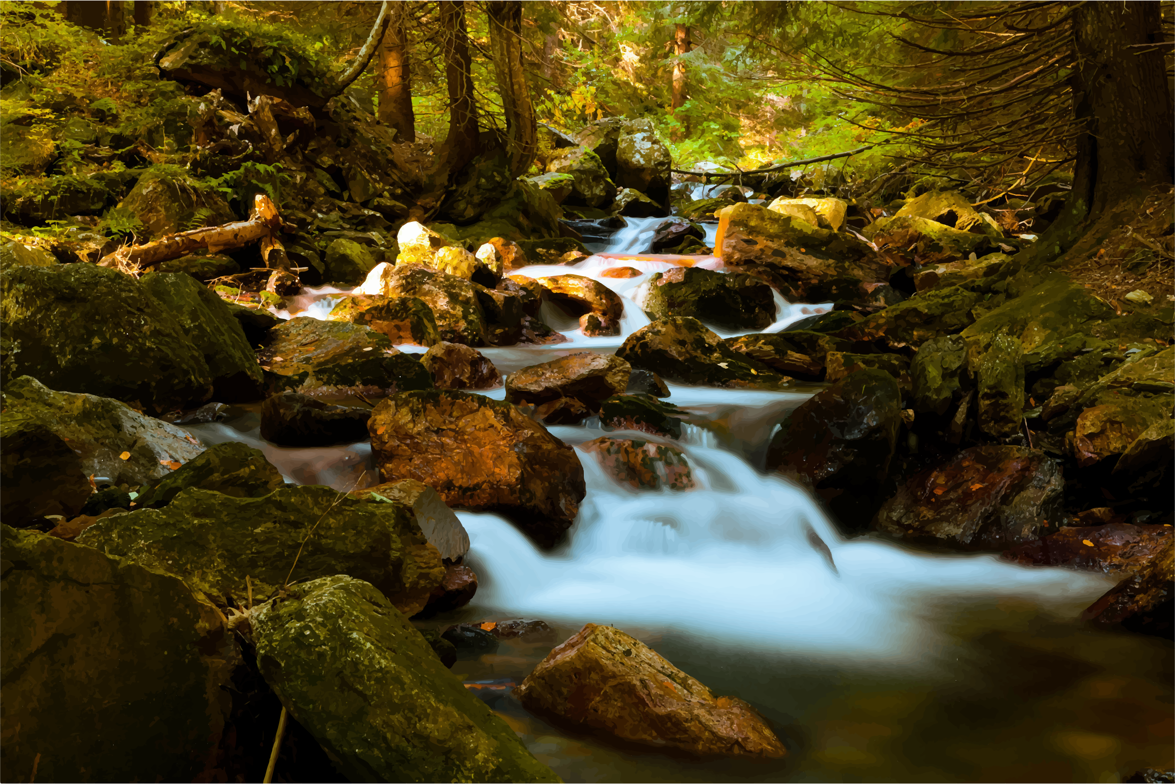 Mountain Stream In Forest by GDJ