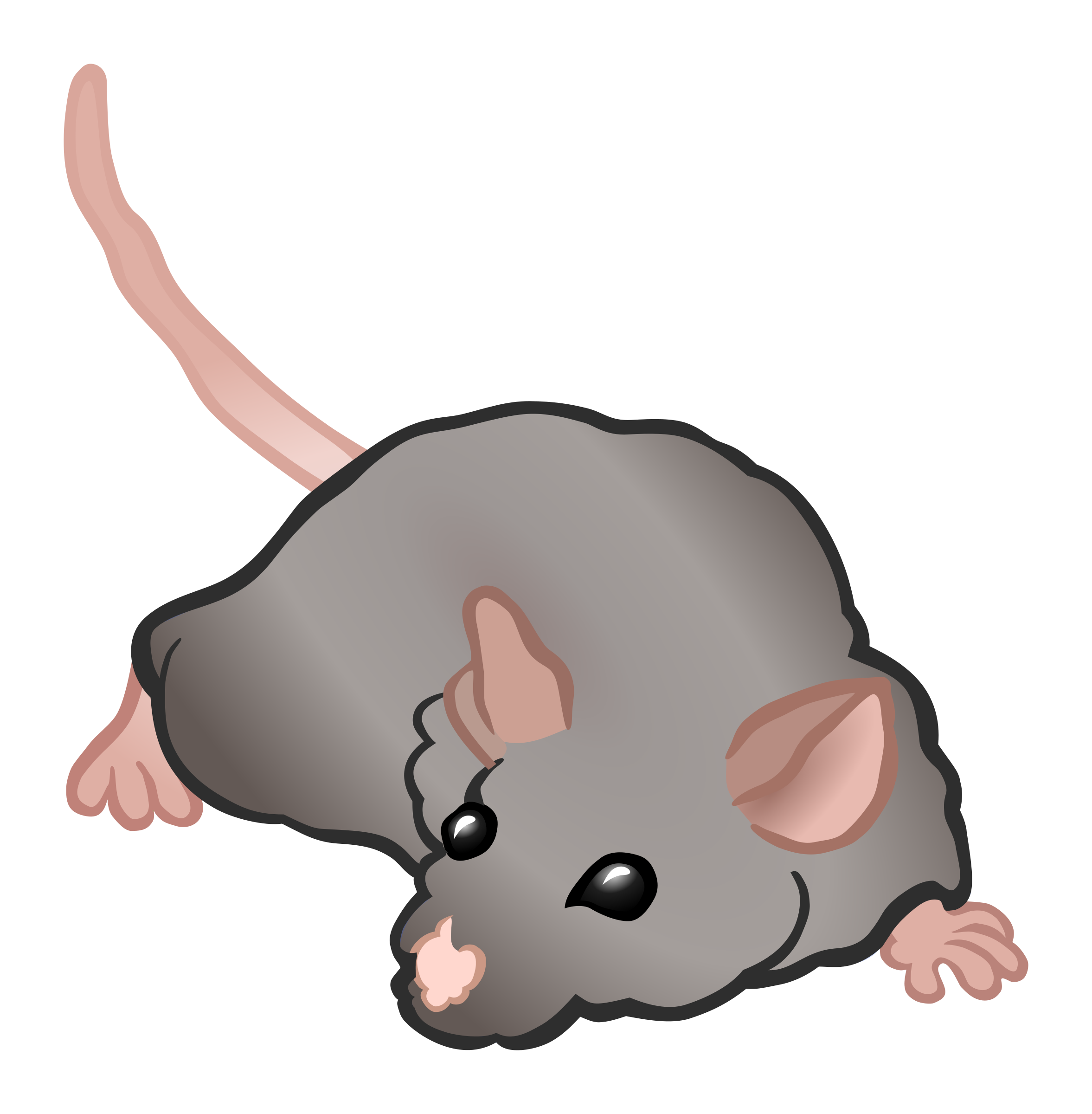 mouse - coloured by frankes