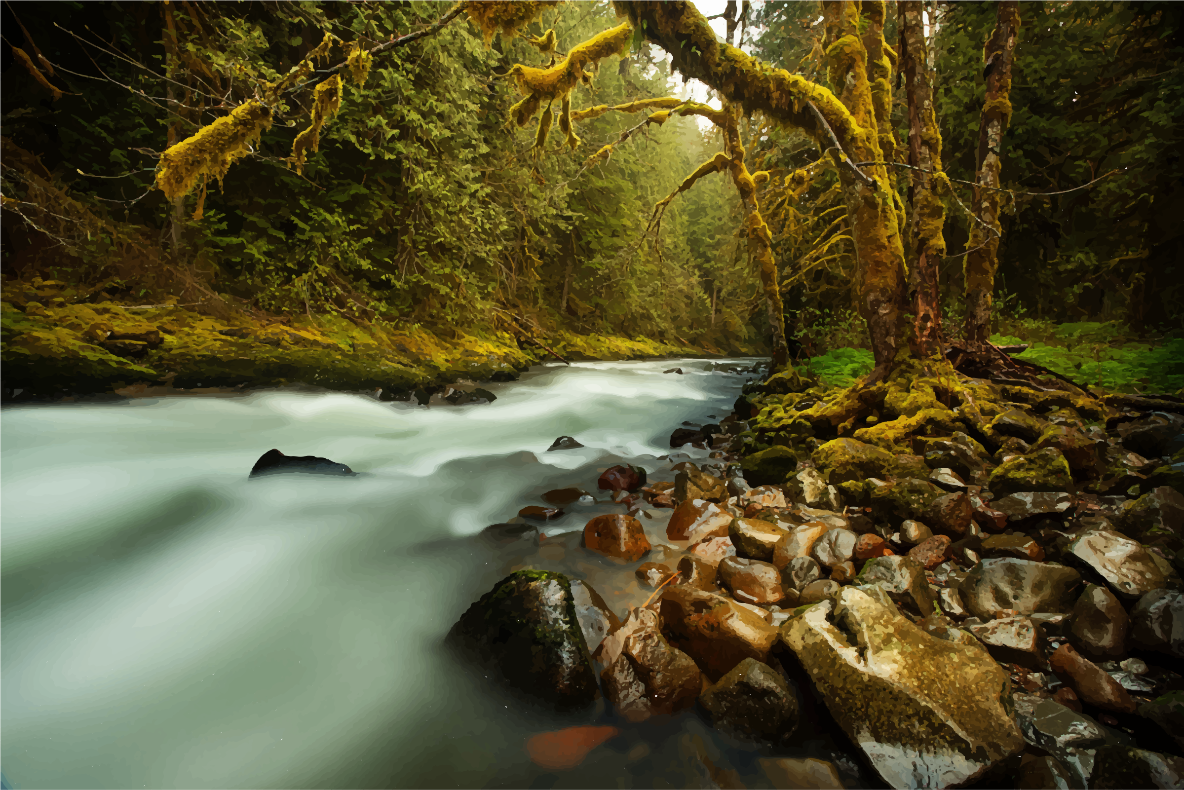 Lush Forest Creek by GDJ