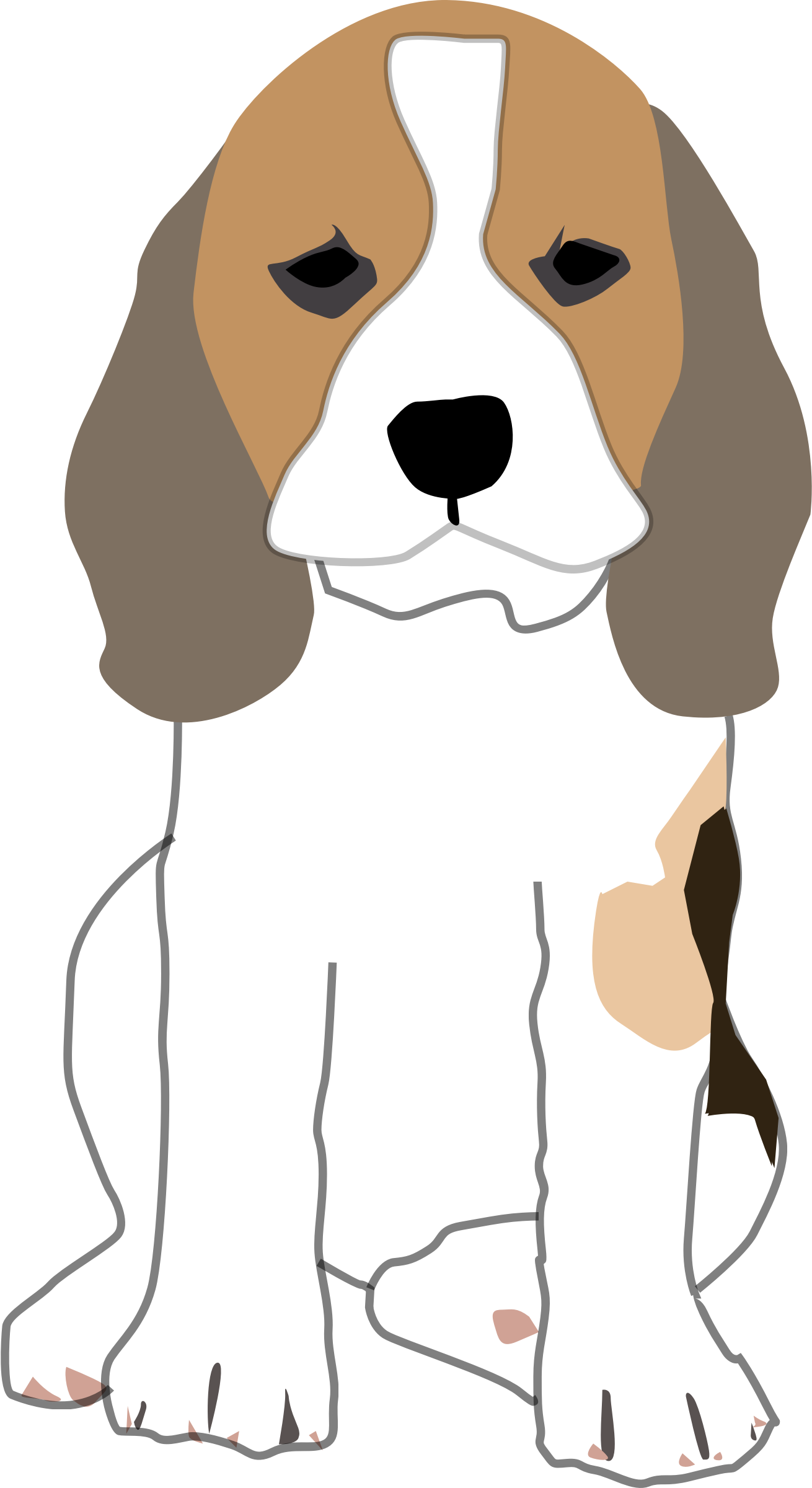 Beagle Puppy by mikestratton.net