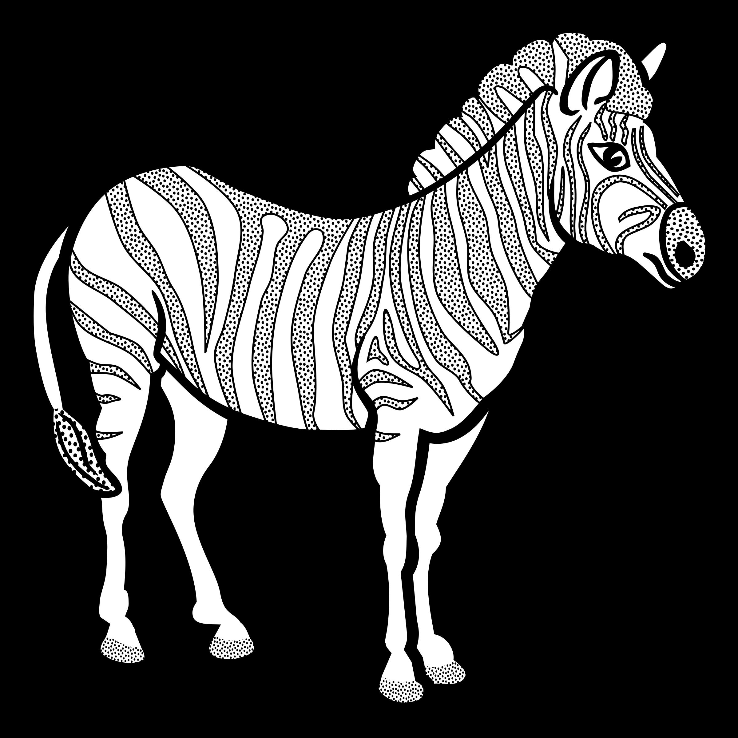 Line Art Zebra : Clipart zebra lineart