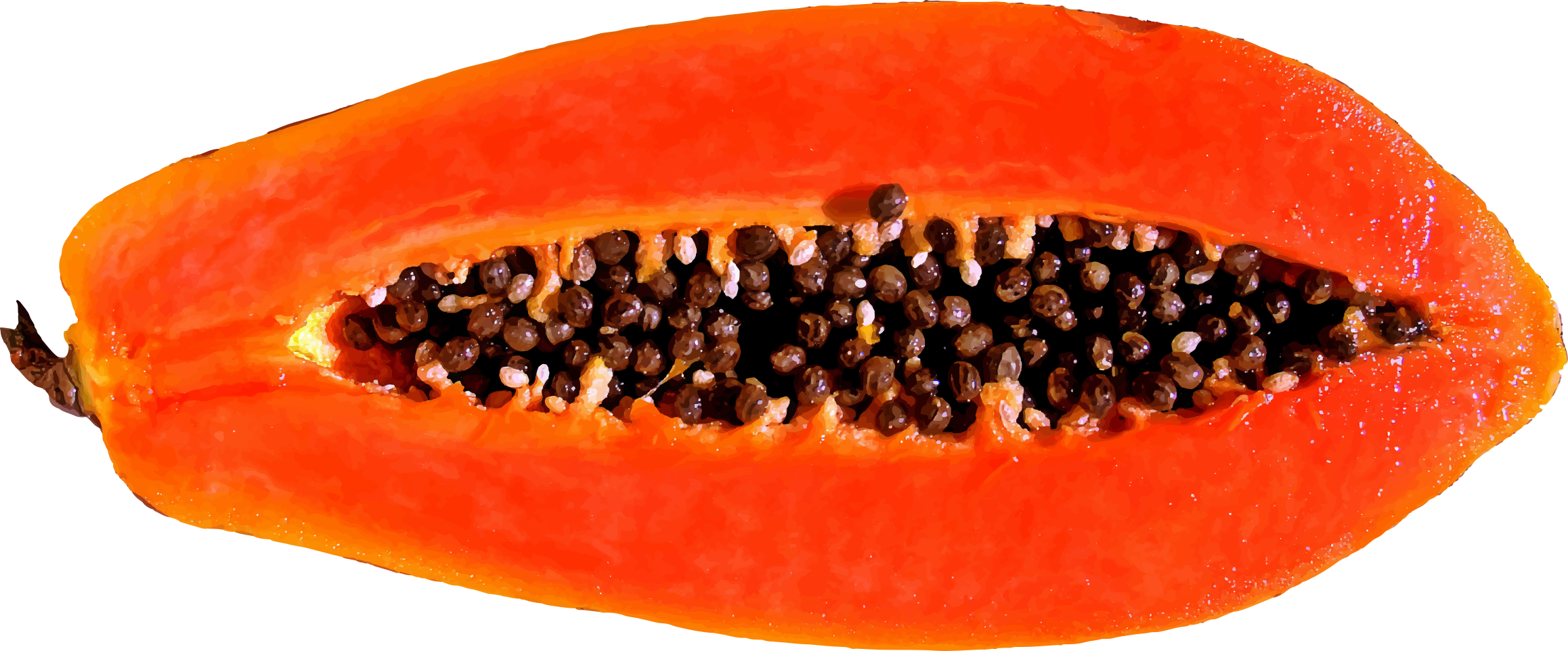 https://openclipart.org/image/2400px/svg_to_png/220670/Papaya.png