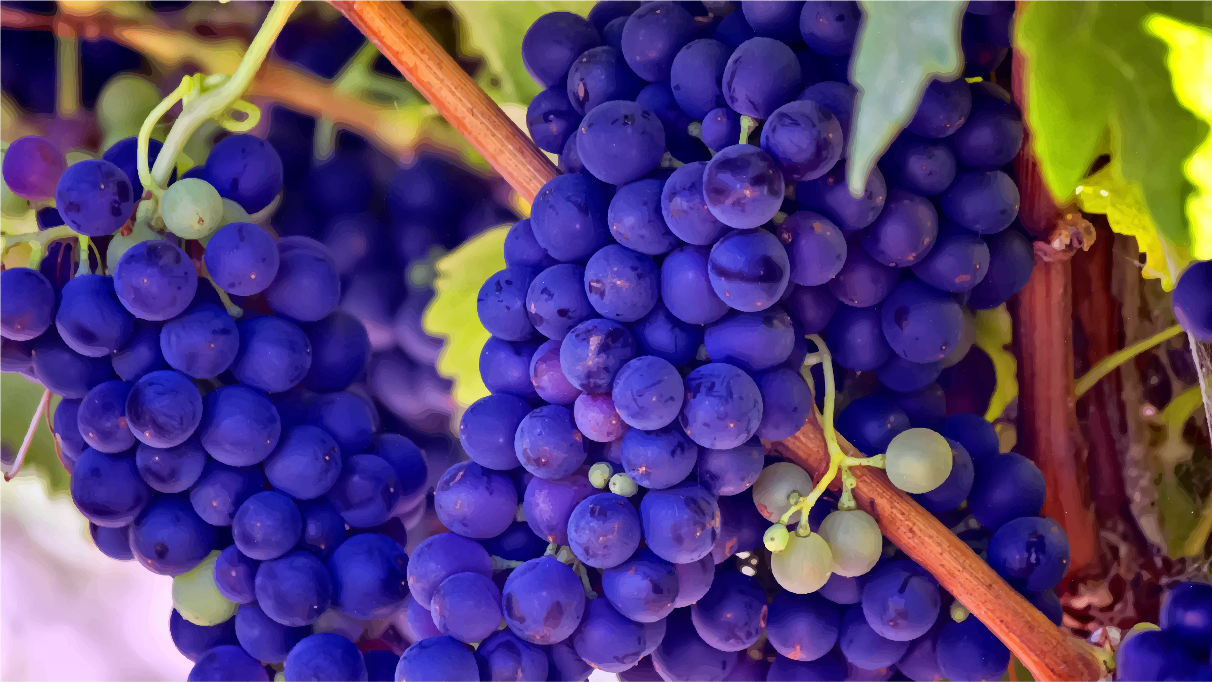 Bright Blue Grapes by GDJ