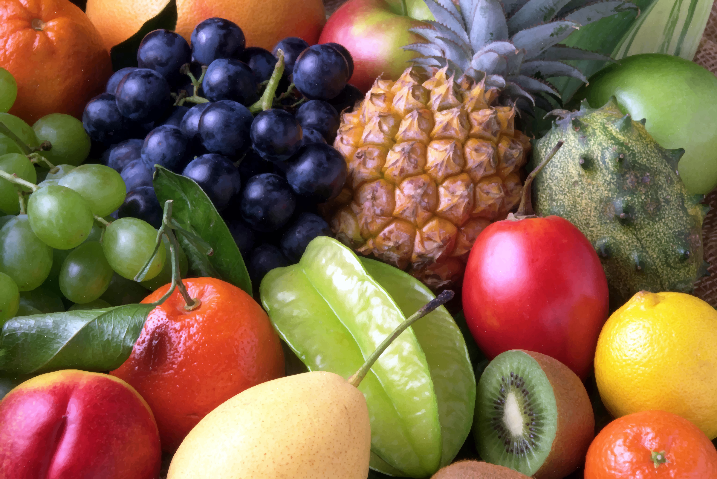 https://openclipart.org/image/2400px/svg_to_png/220714/Fruits.png