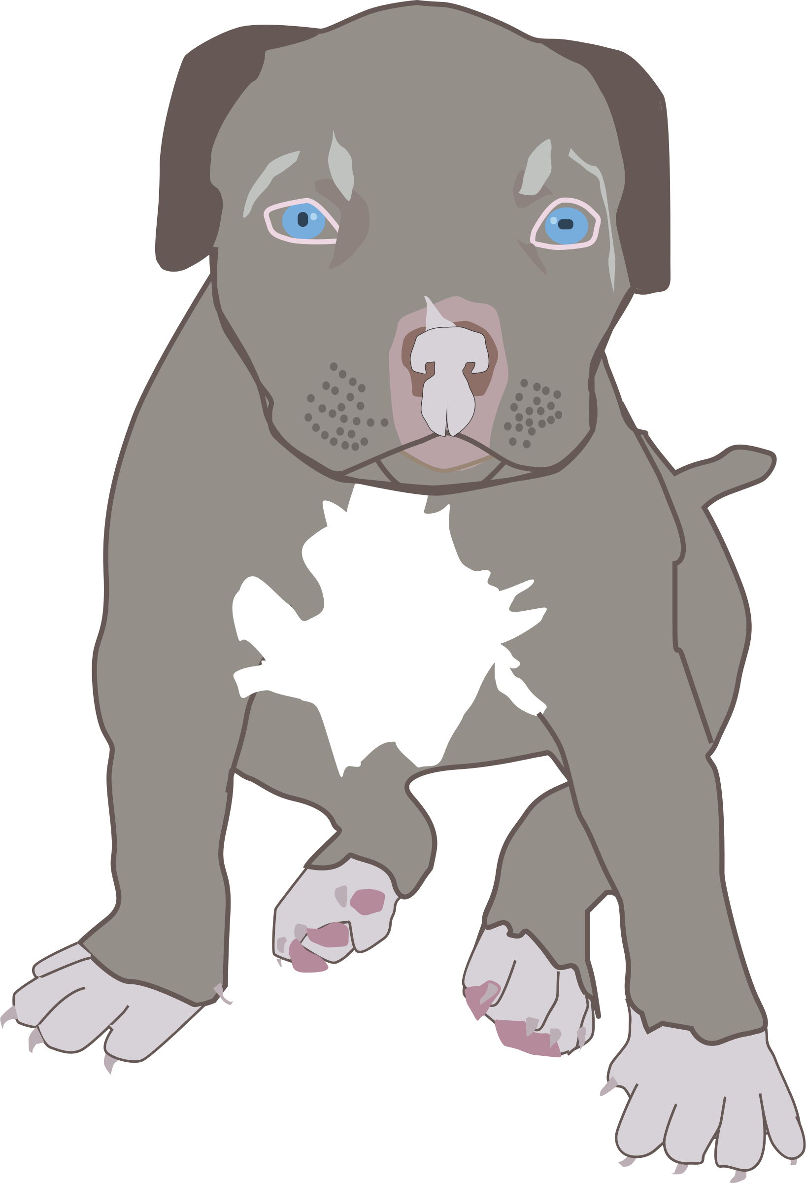 Clipart - Pit Bull Puppy