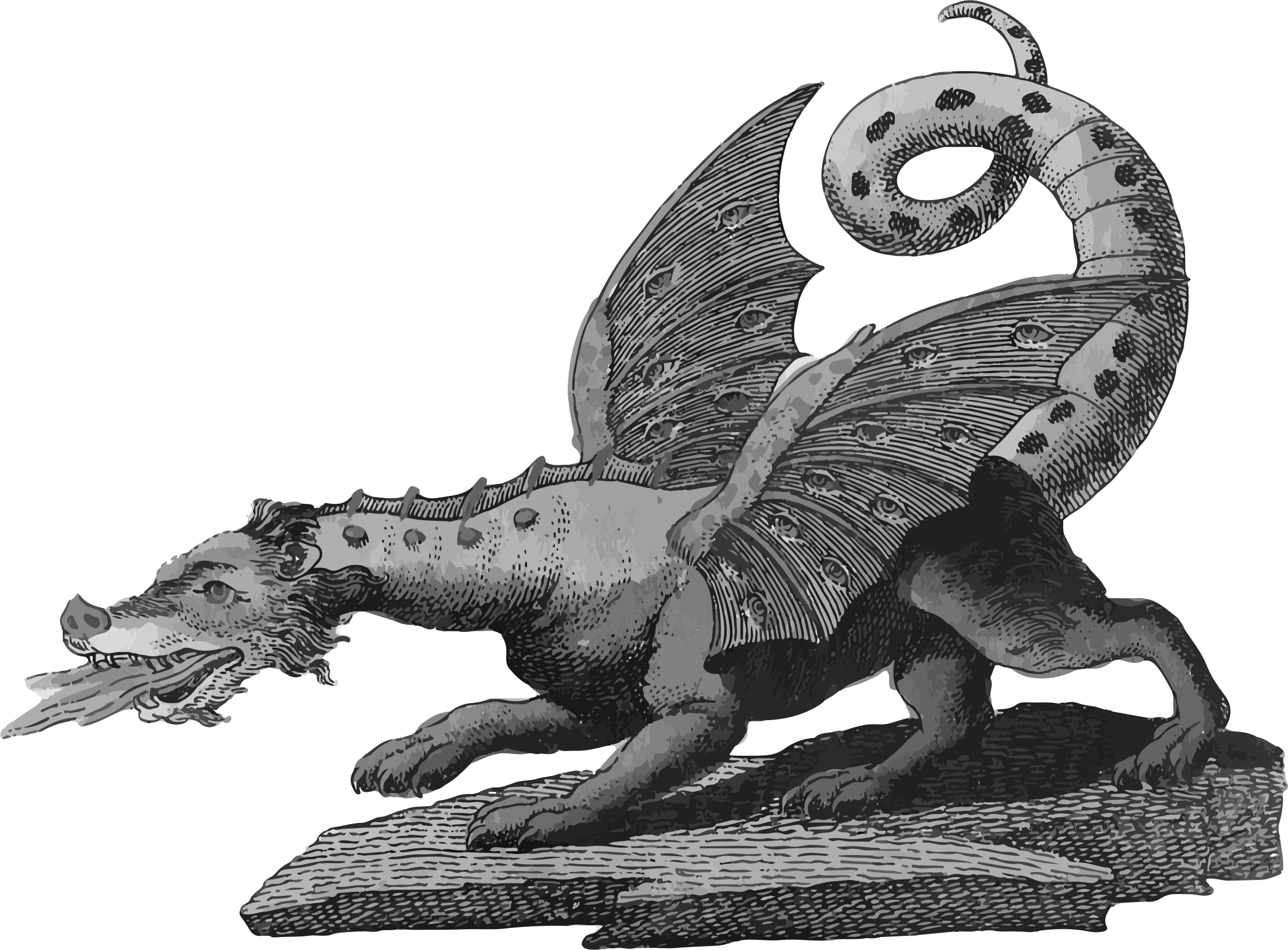 Dragon Grayscale by GDJ