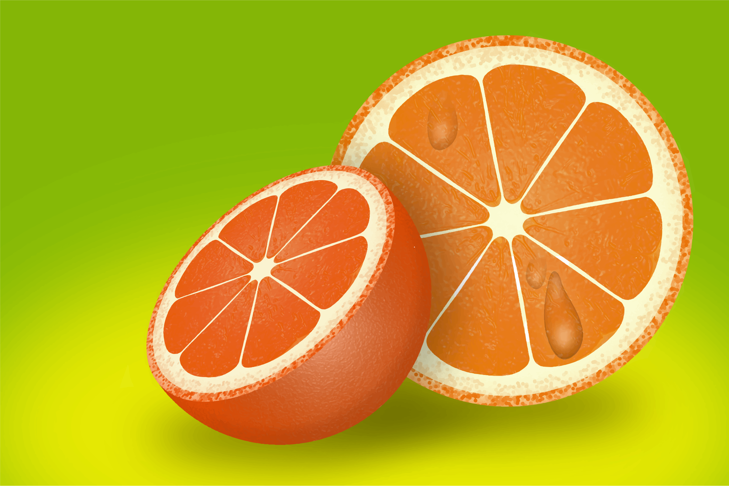 Refreshing Sliced Orange by GDJ