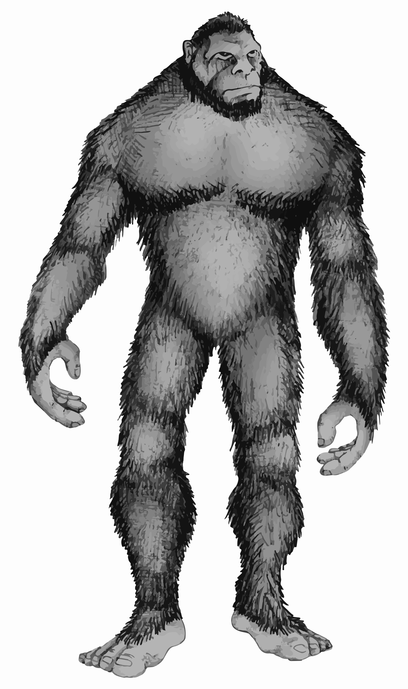 https://openclipart.org/image/2400px/svg_to_png/222913/Bigfoot.png