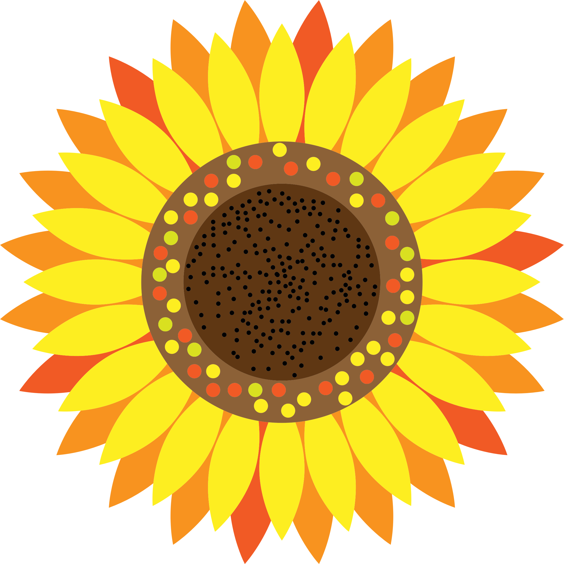 Sunflower by GDJ