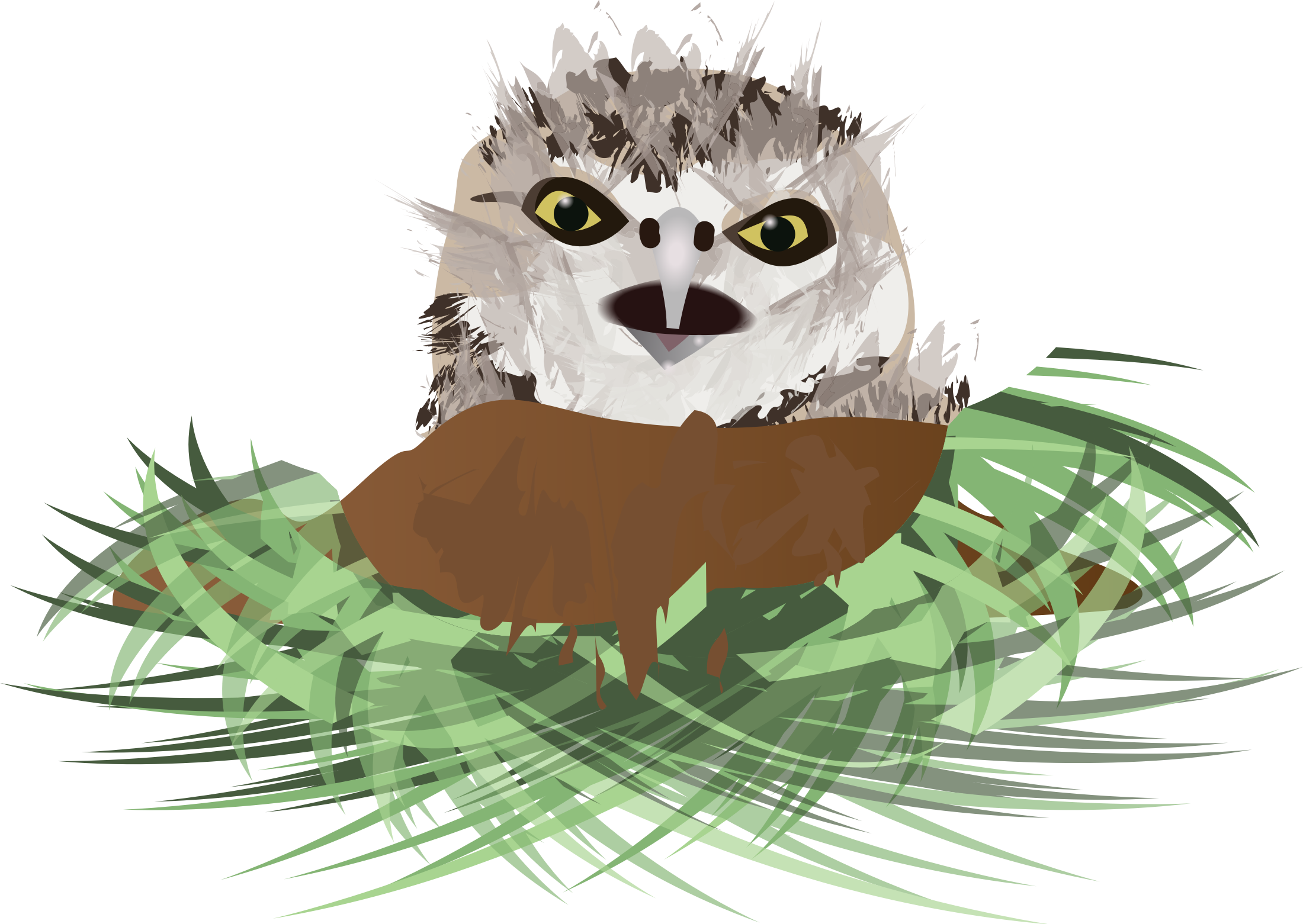 Burrowing Owl by chelsey832