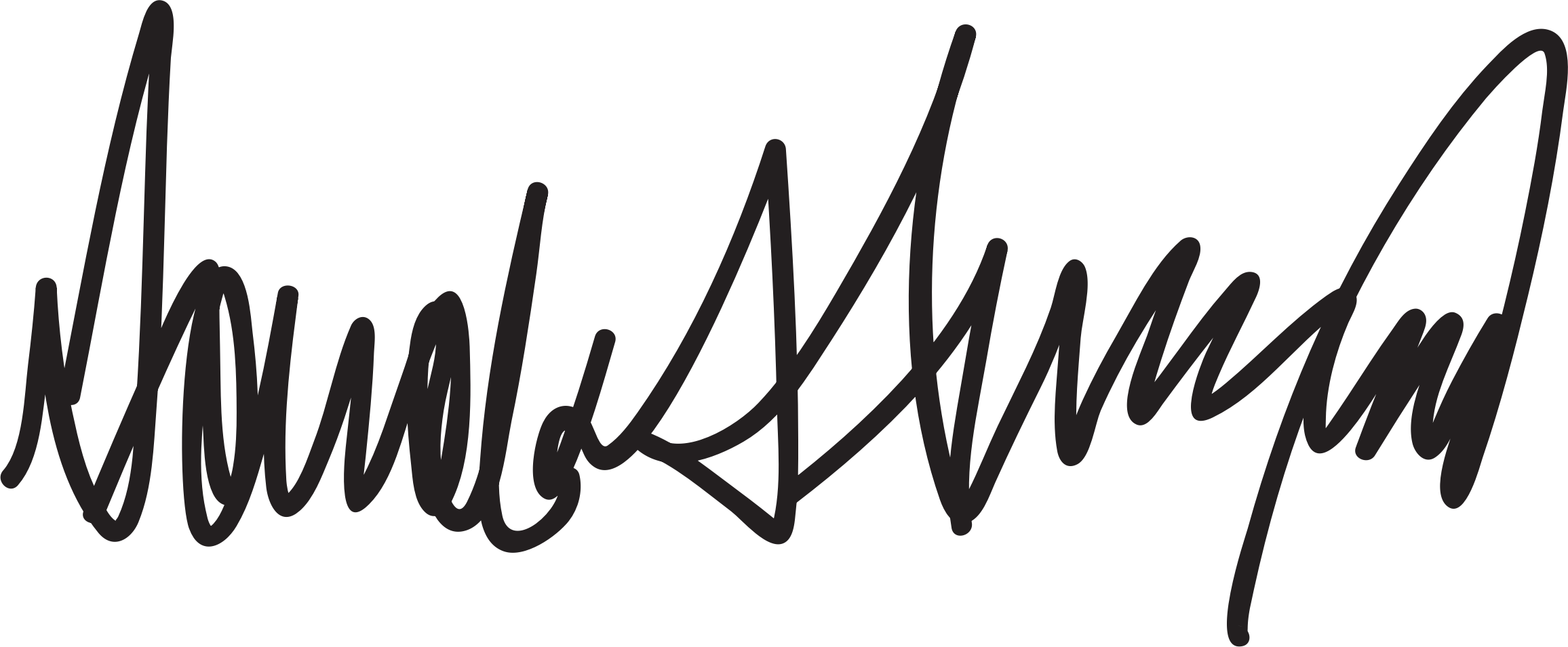 Donald Trump Signature by wallpapergirl