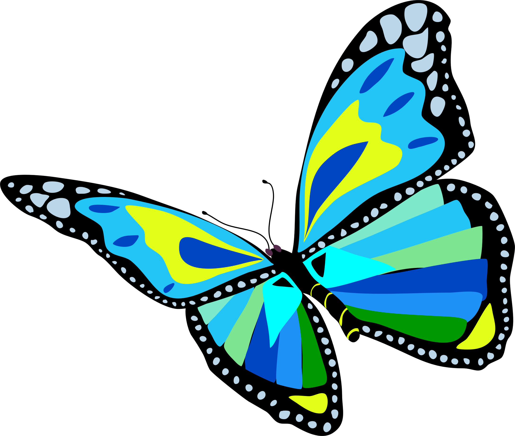 Blue butterfly clipart