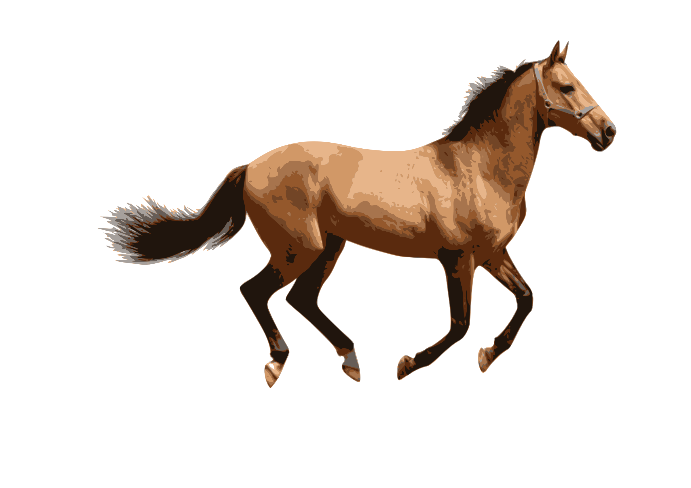 clipart caballo 2 animal clipart images animal clipart for kids