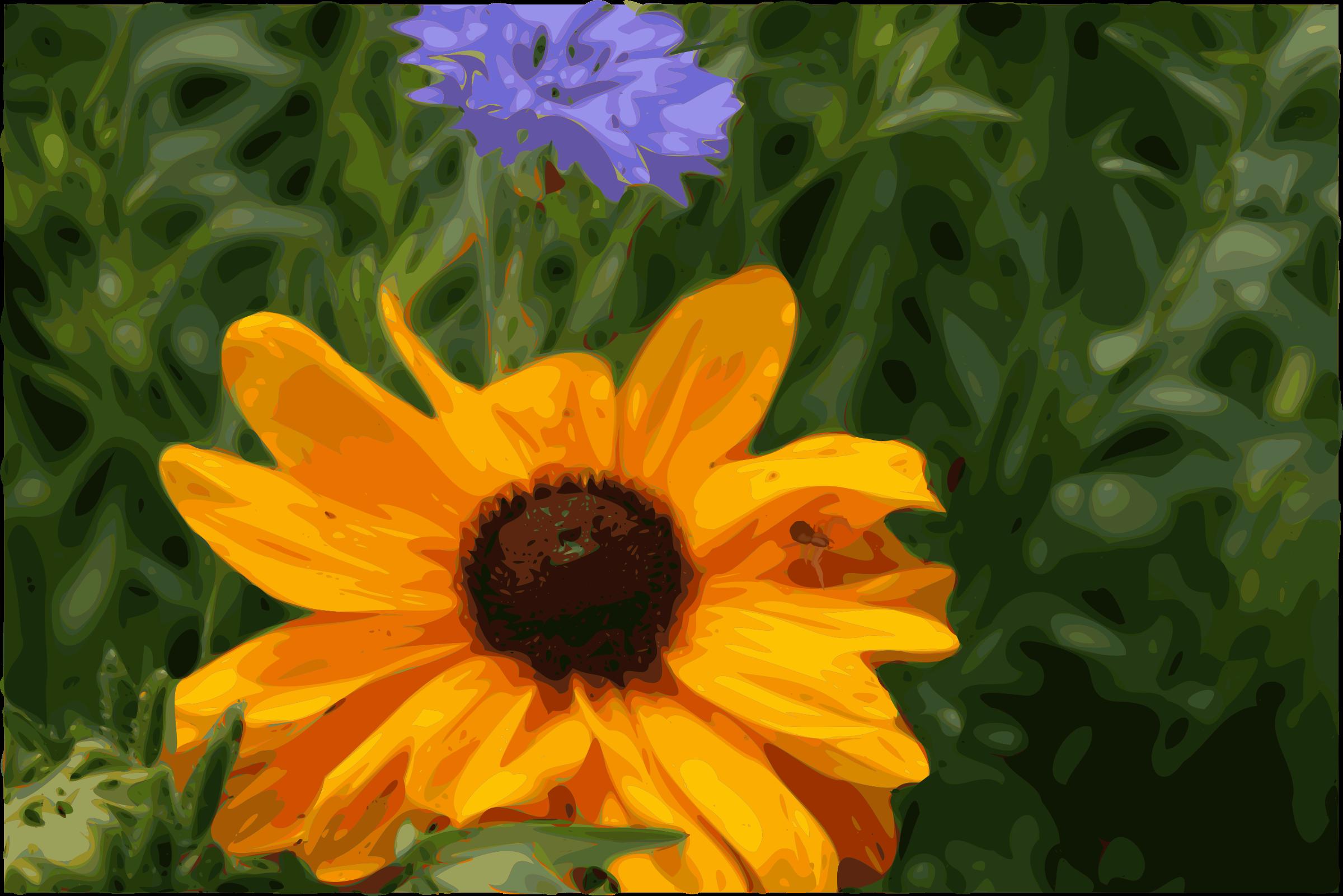 Clipart Spider Flower