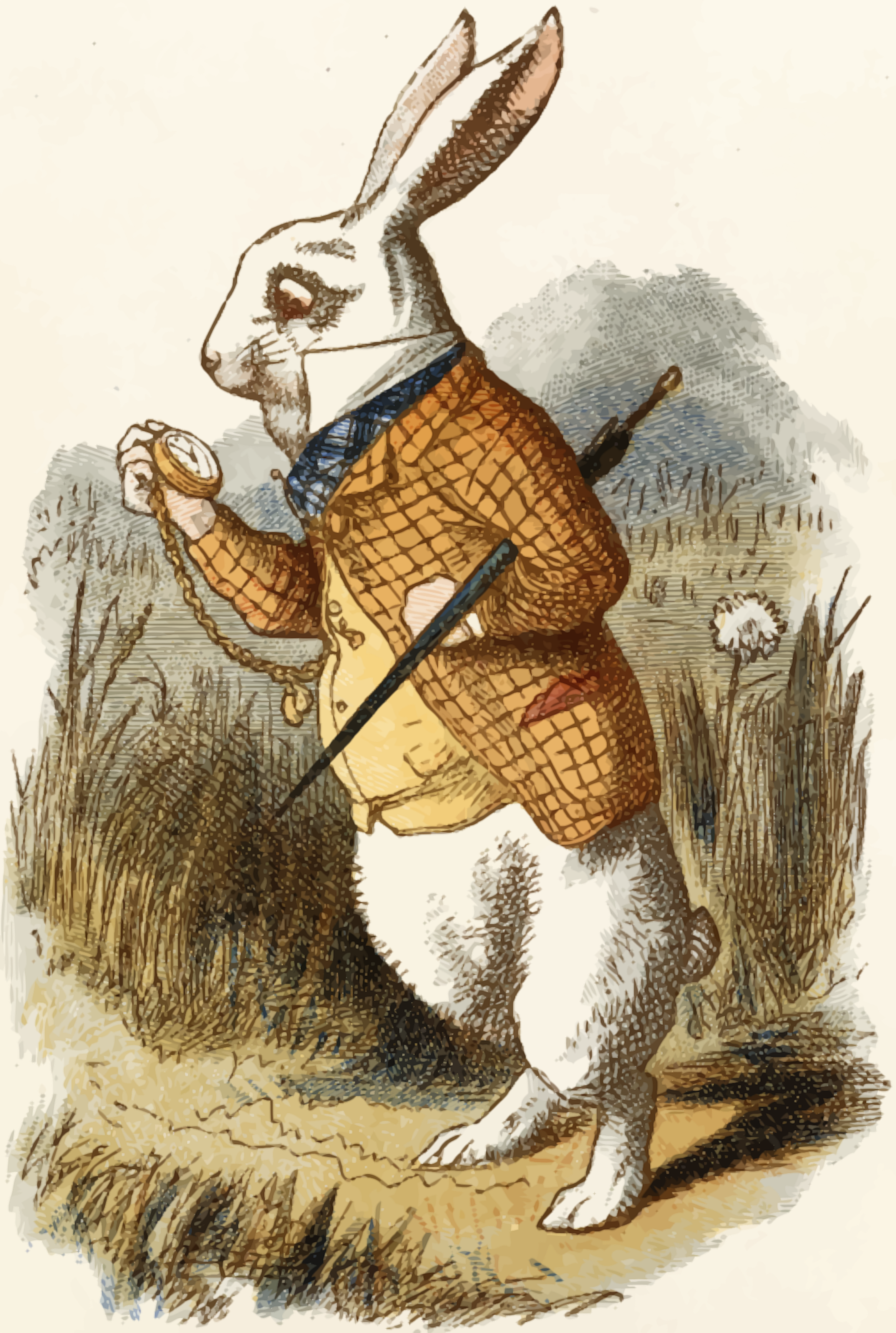 The white rabbit (colour) by Firkin