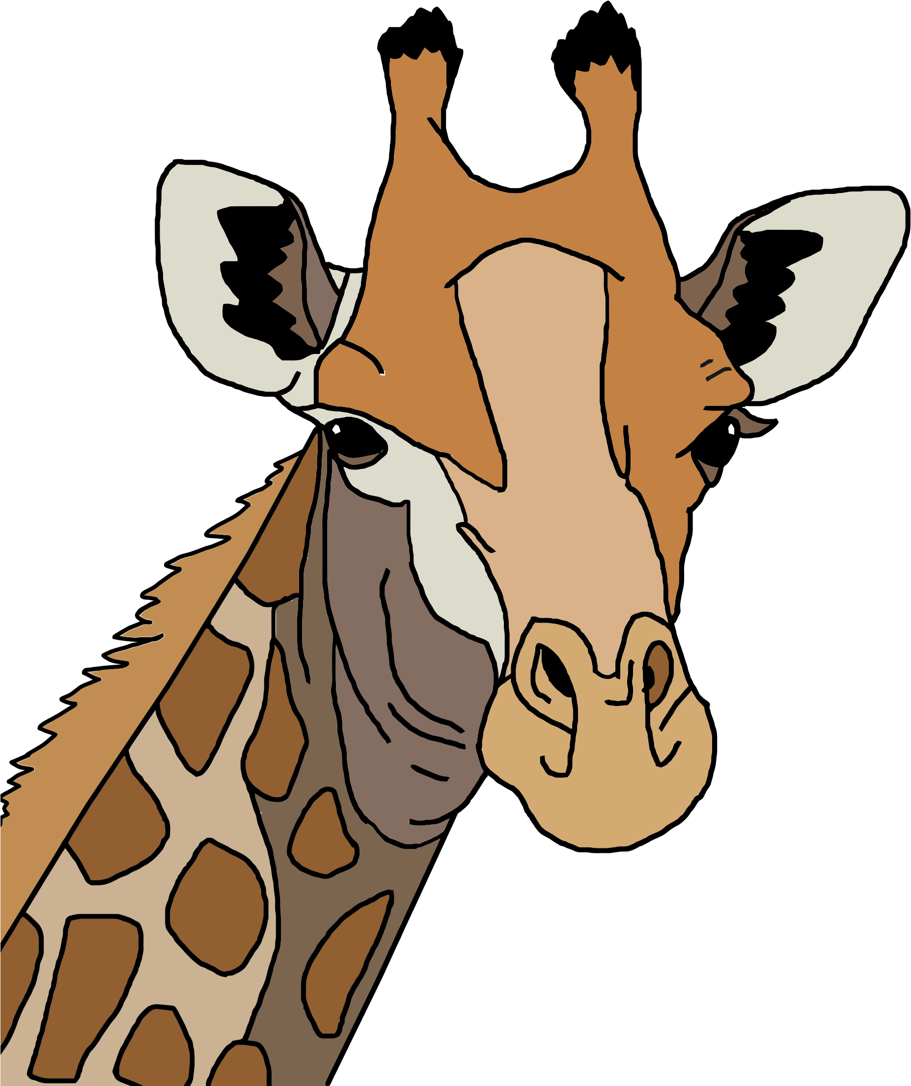 Colored Giraffe by GDJ