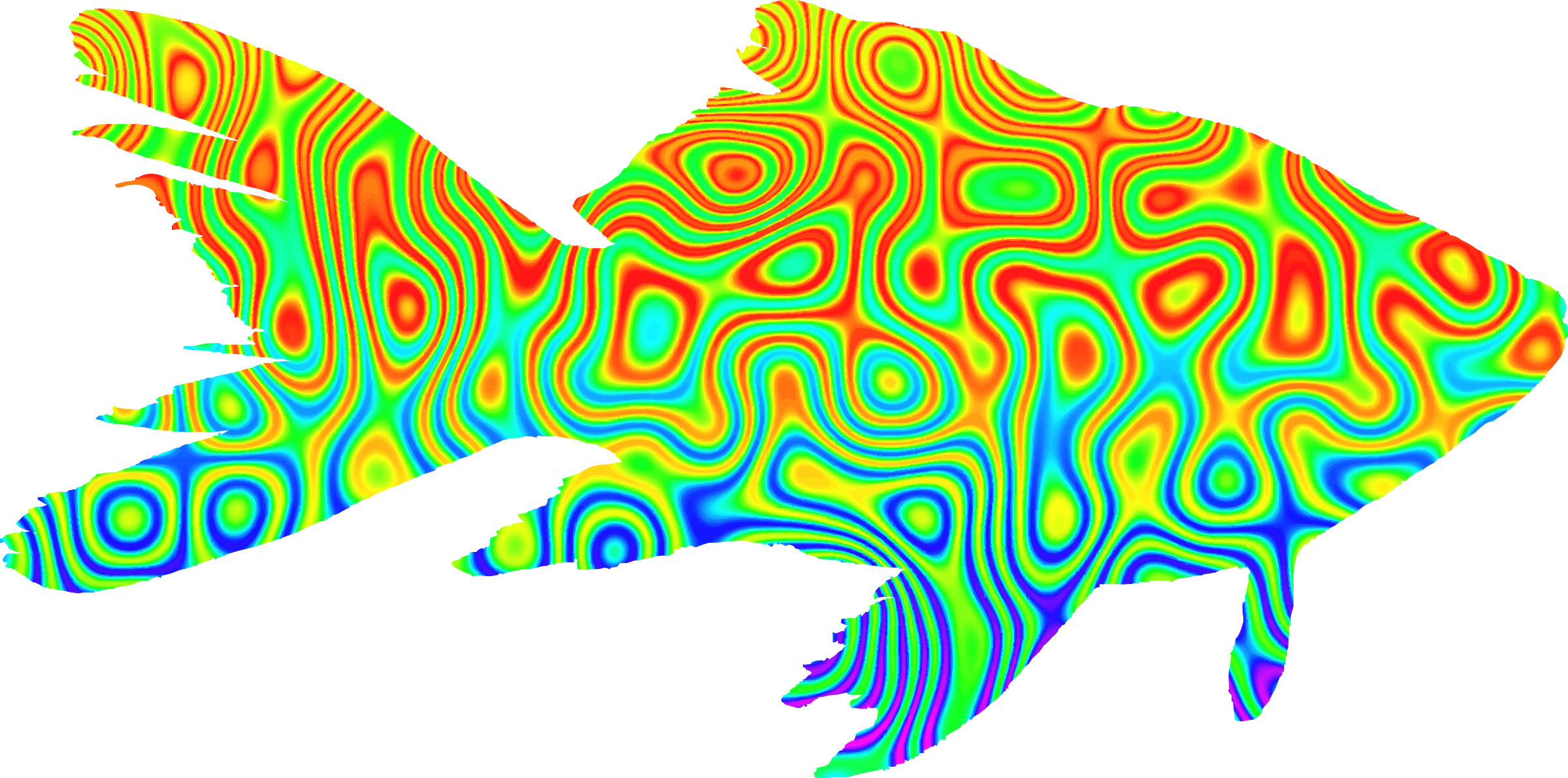 Psychedelic goldfish by Firkin