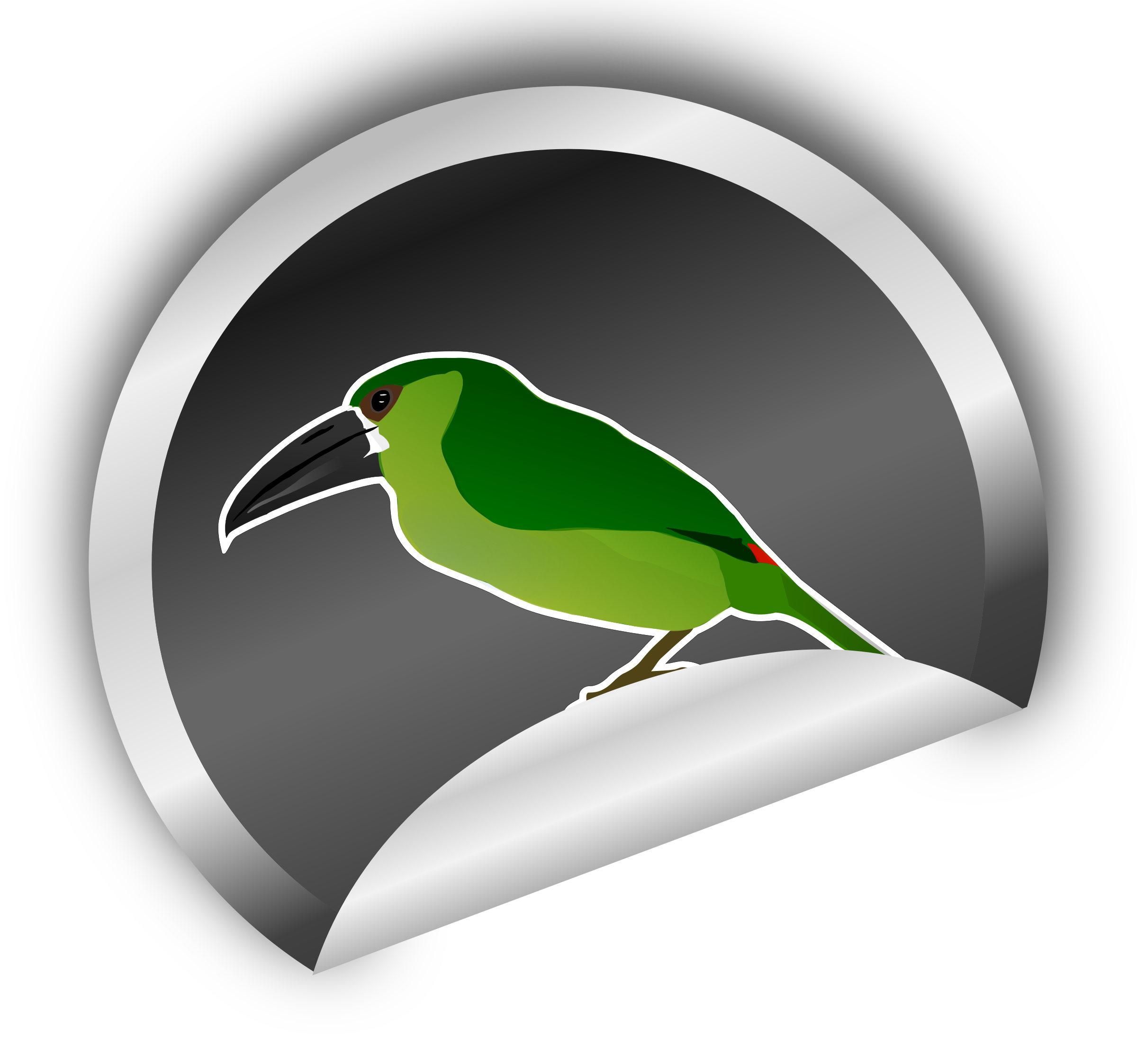 Toucanet on silver sticker by amilo
