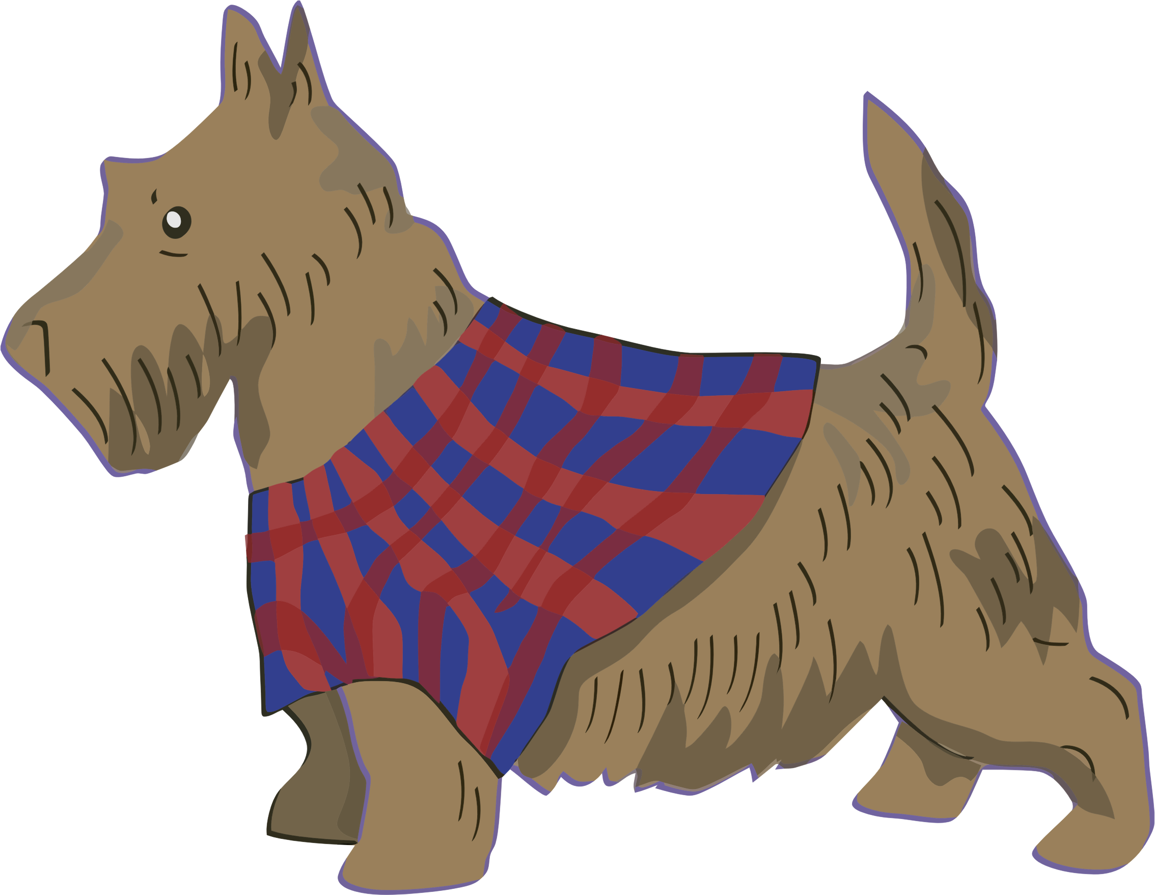 Scottish Terrier by GDJ