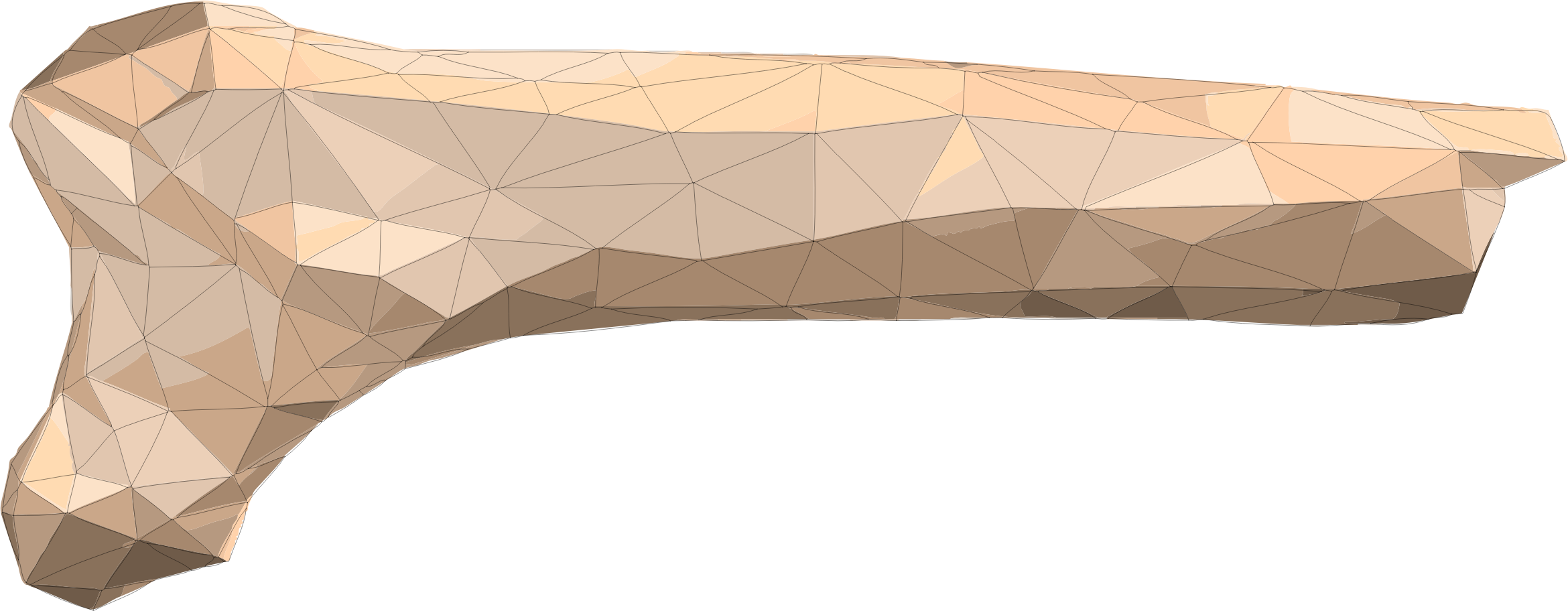 Polygonal Bone by GDJ