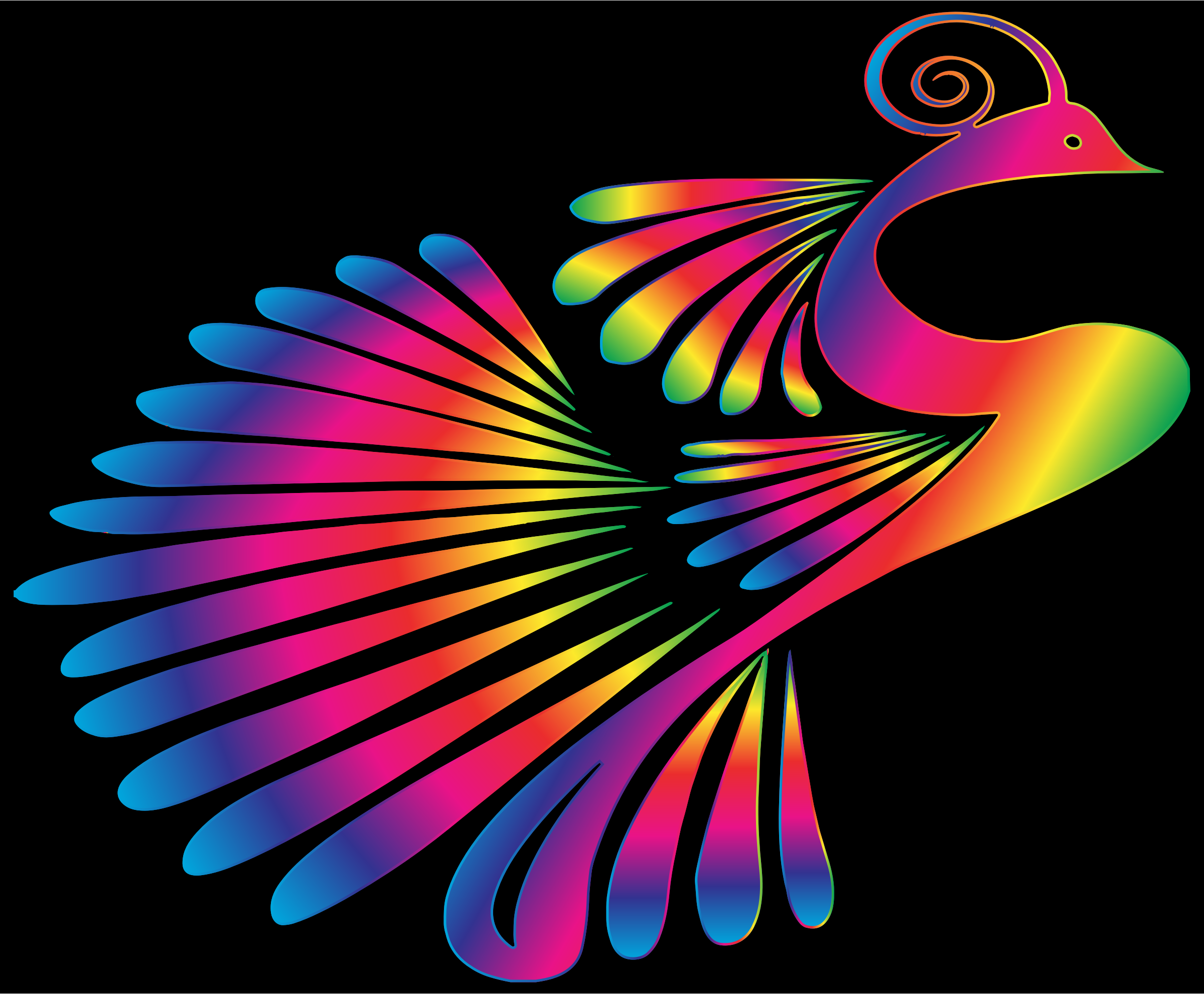 Colorful Stylized Peacock 16 by GDJ