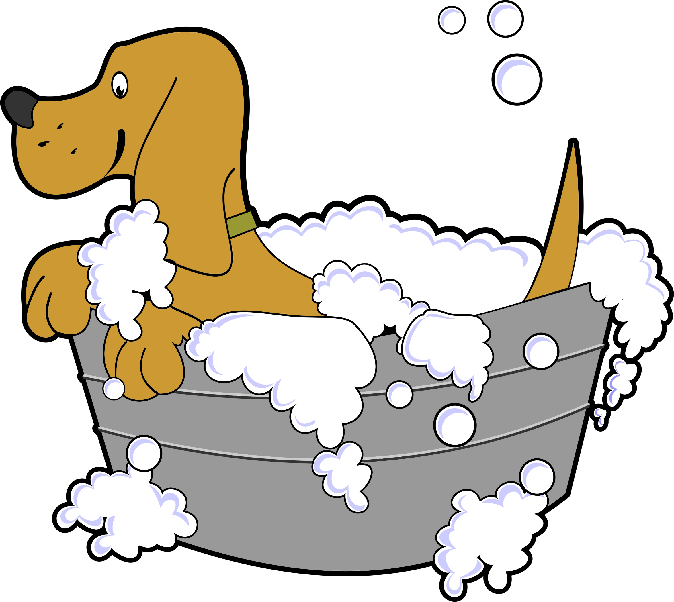 Dog In Washing Tub by GDJ