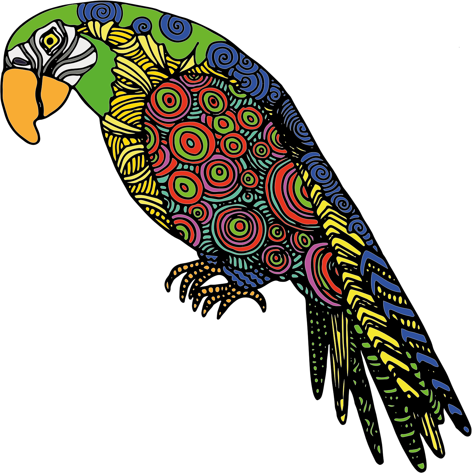 Detailed Parrot by GDJ