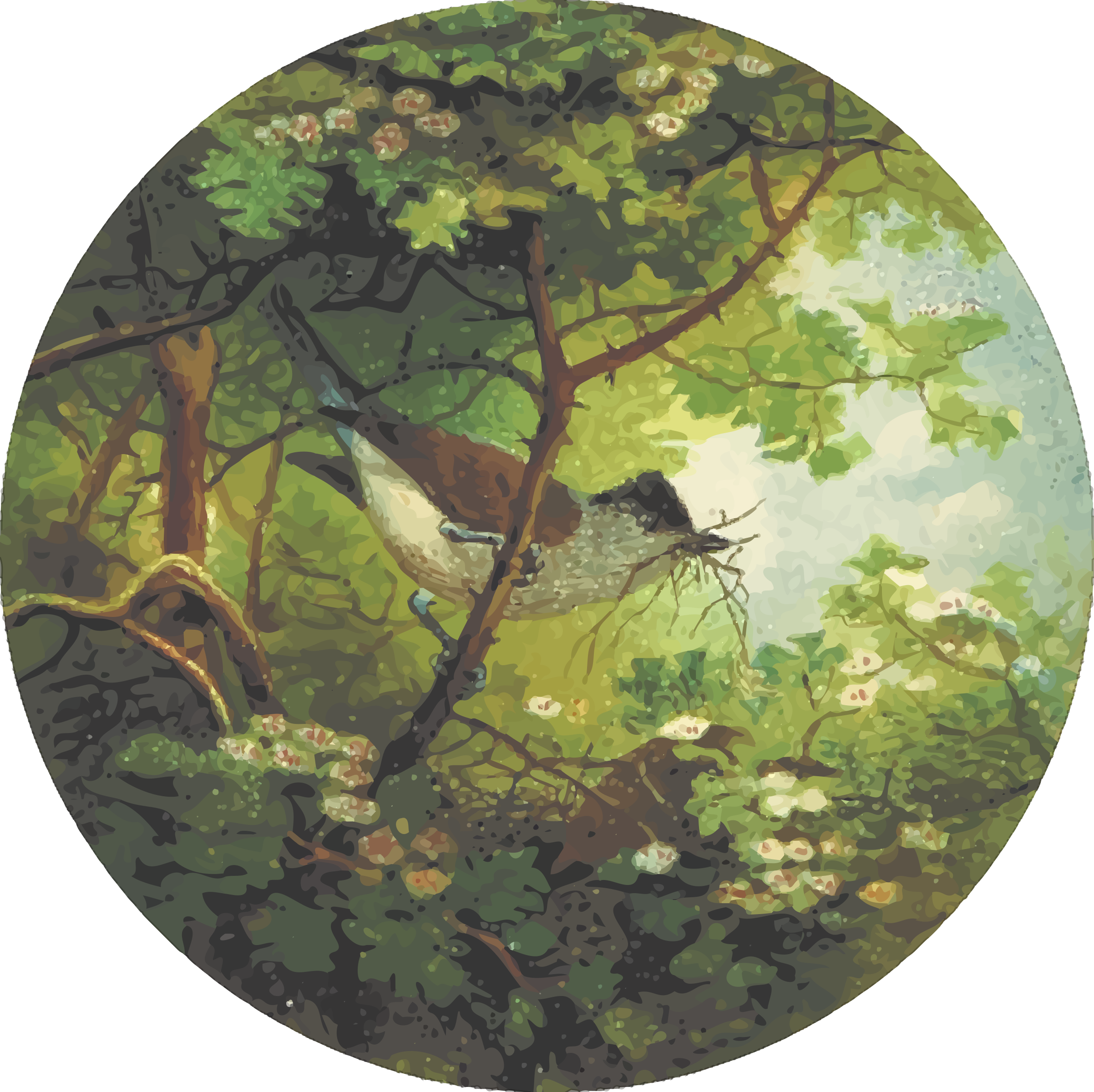 Circular blackcap drawing by Firkin