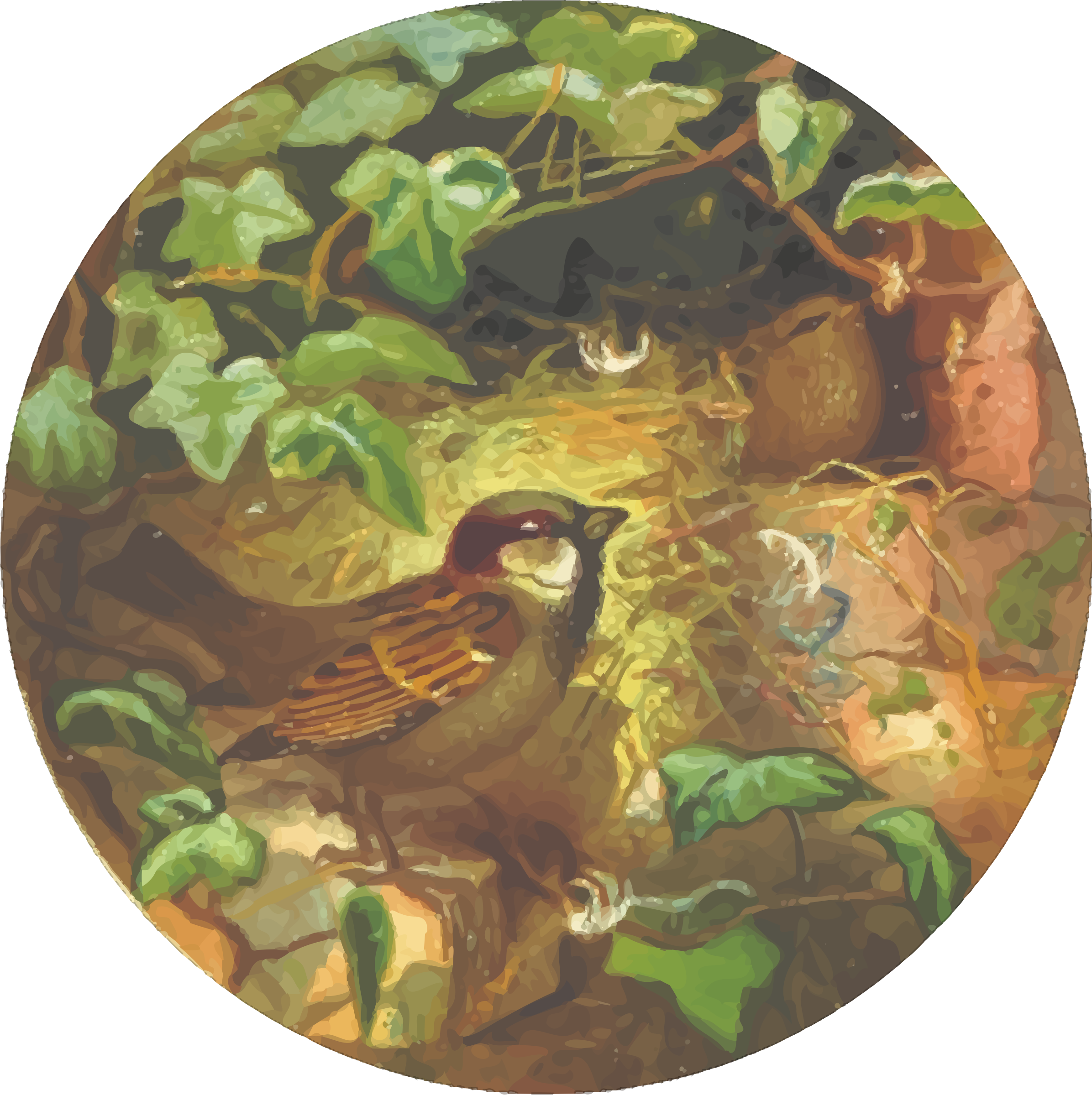 Circular house sparrow drawing by Firkin