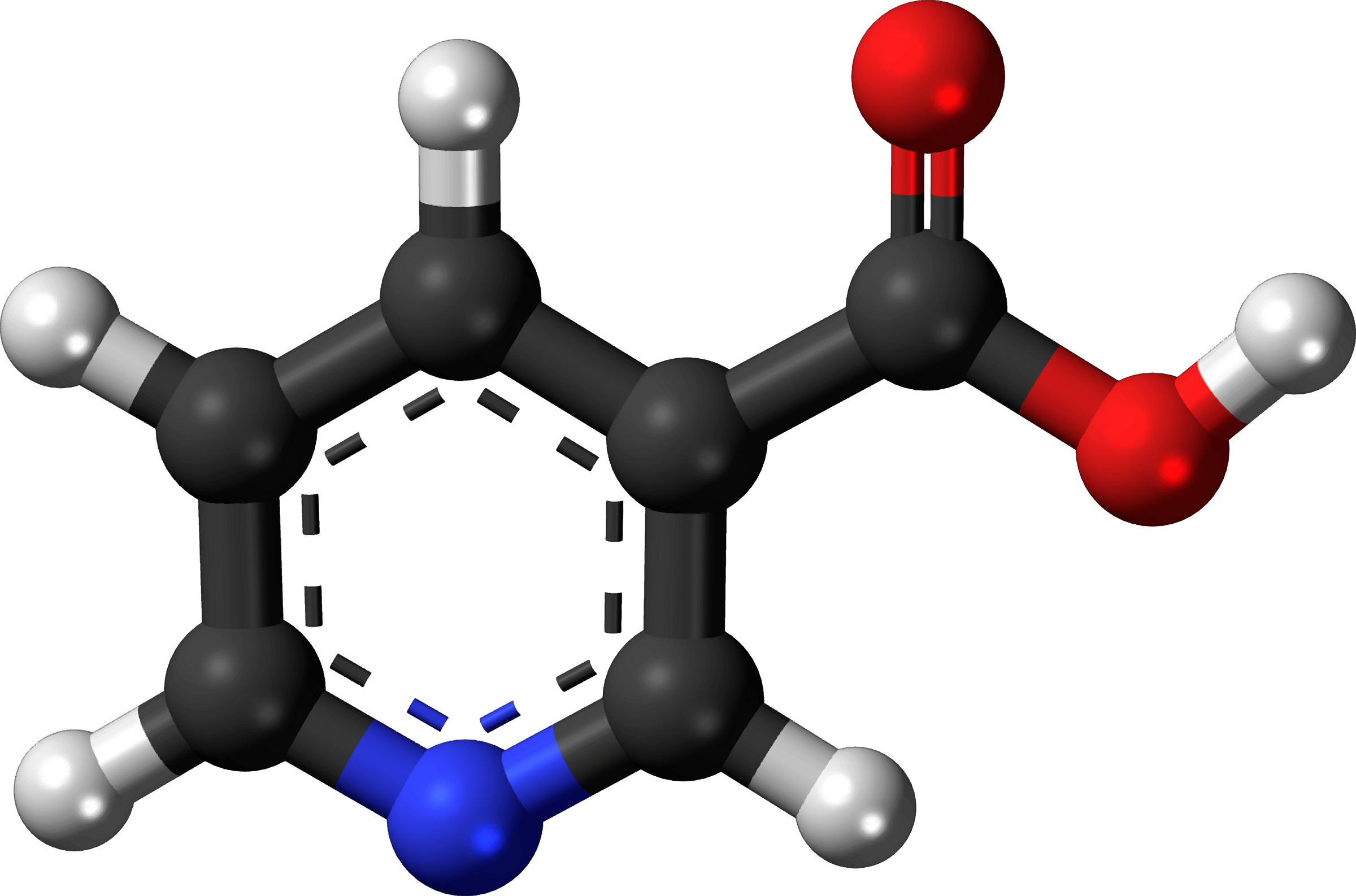 Famous (and infamous) molecules 19 - vitamin B3 by Firkin