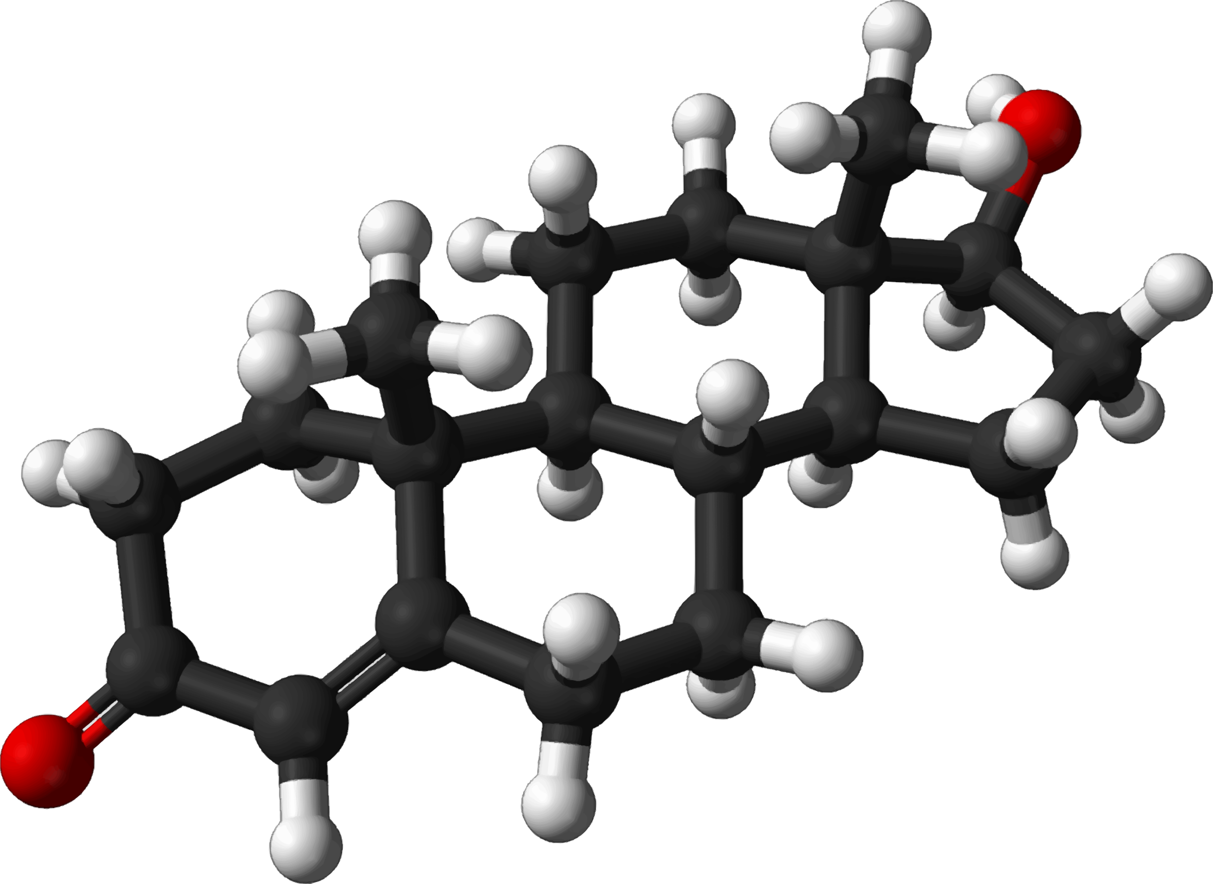 Famous (and infamous) molecules 29 - testosterone by Firkin