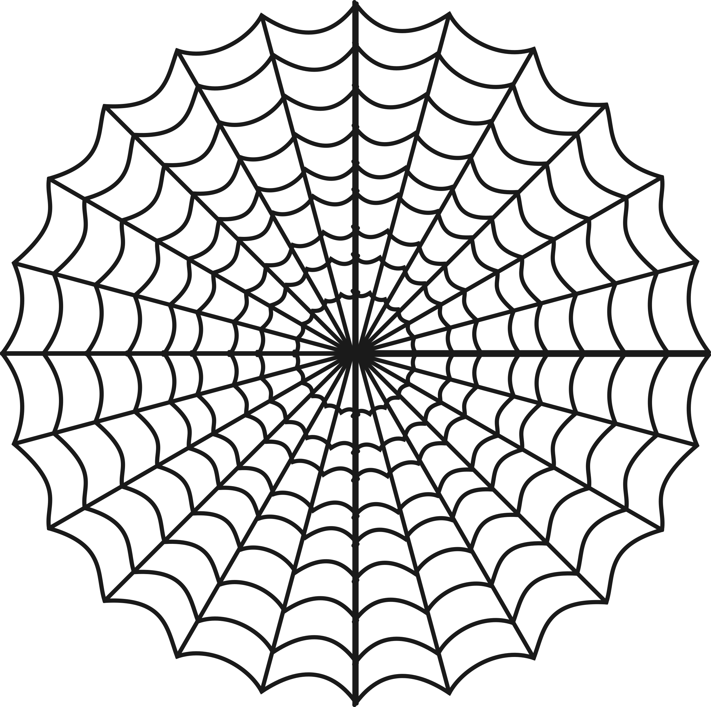 spiders web by tom