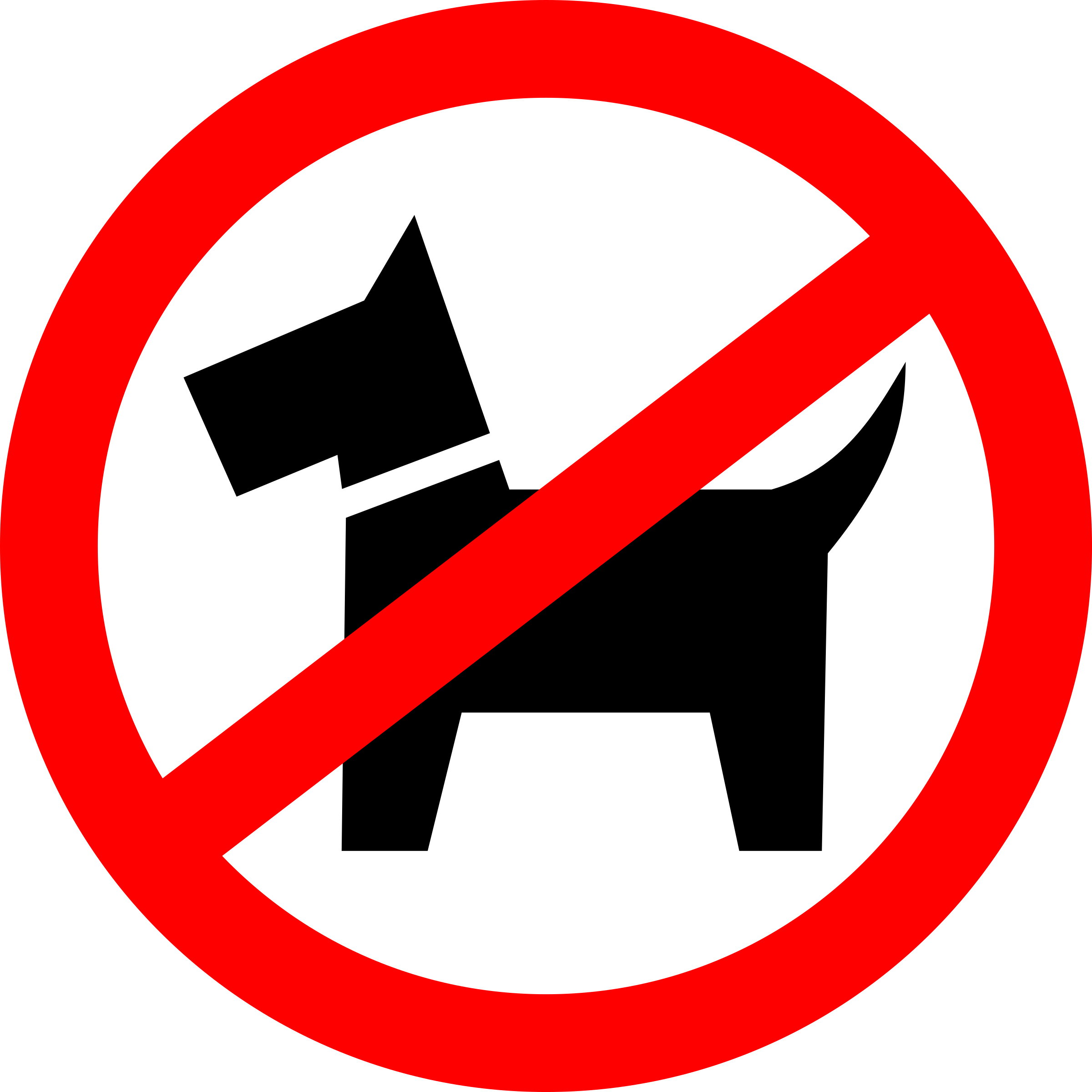Dog walking is prohibited by rones
