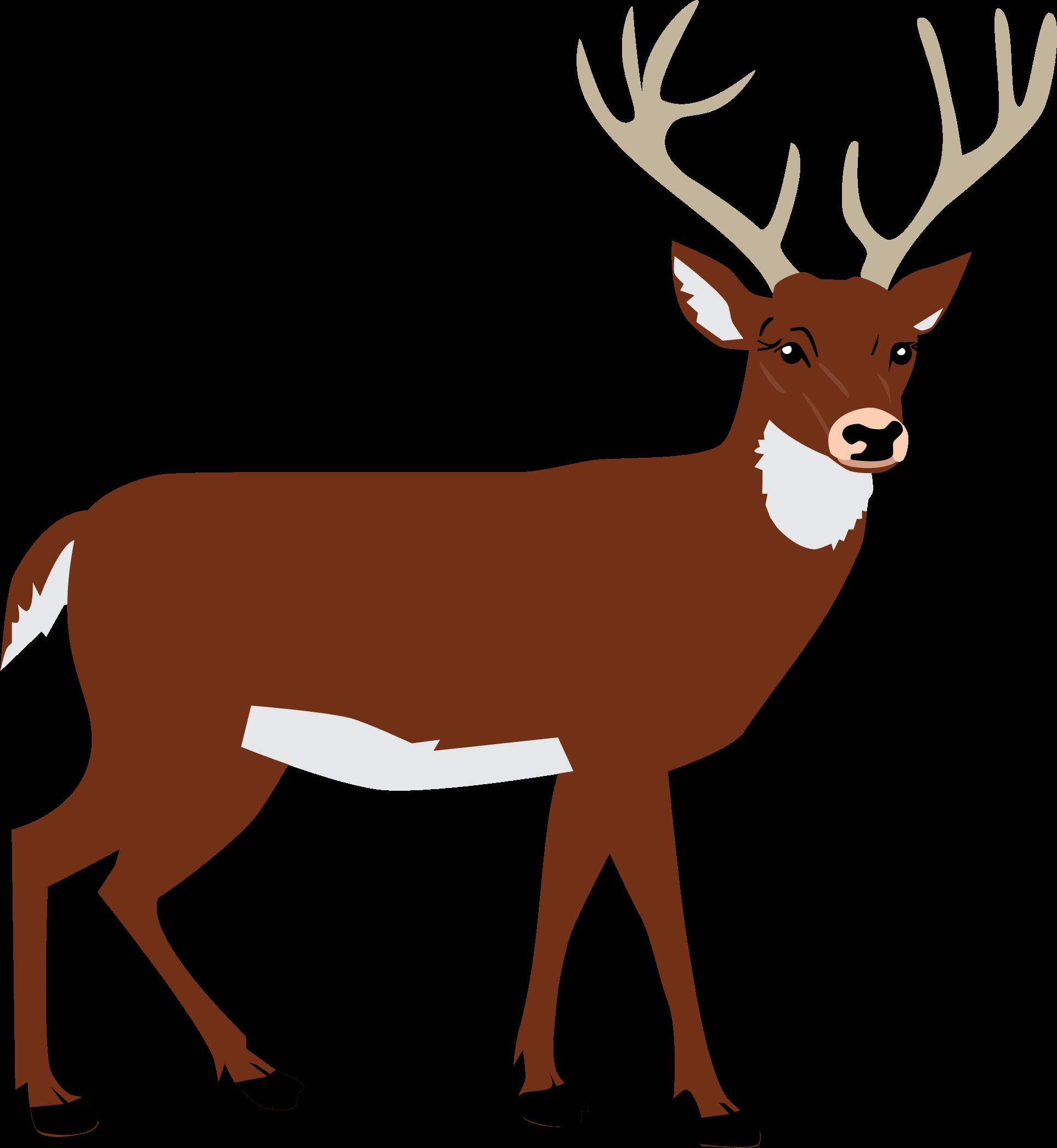 clipart male deer rh openclipart org clip art deer pics clip art deer silhouette