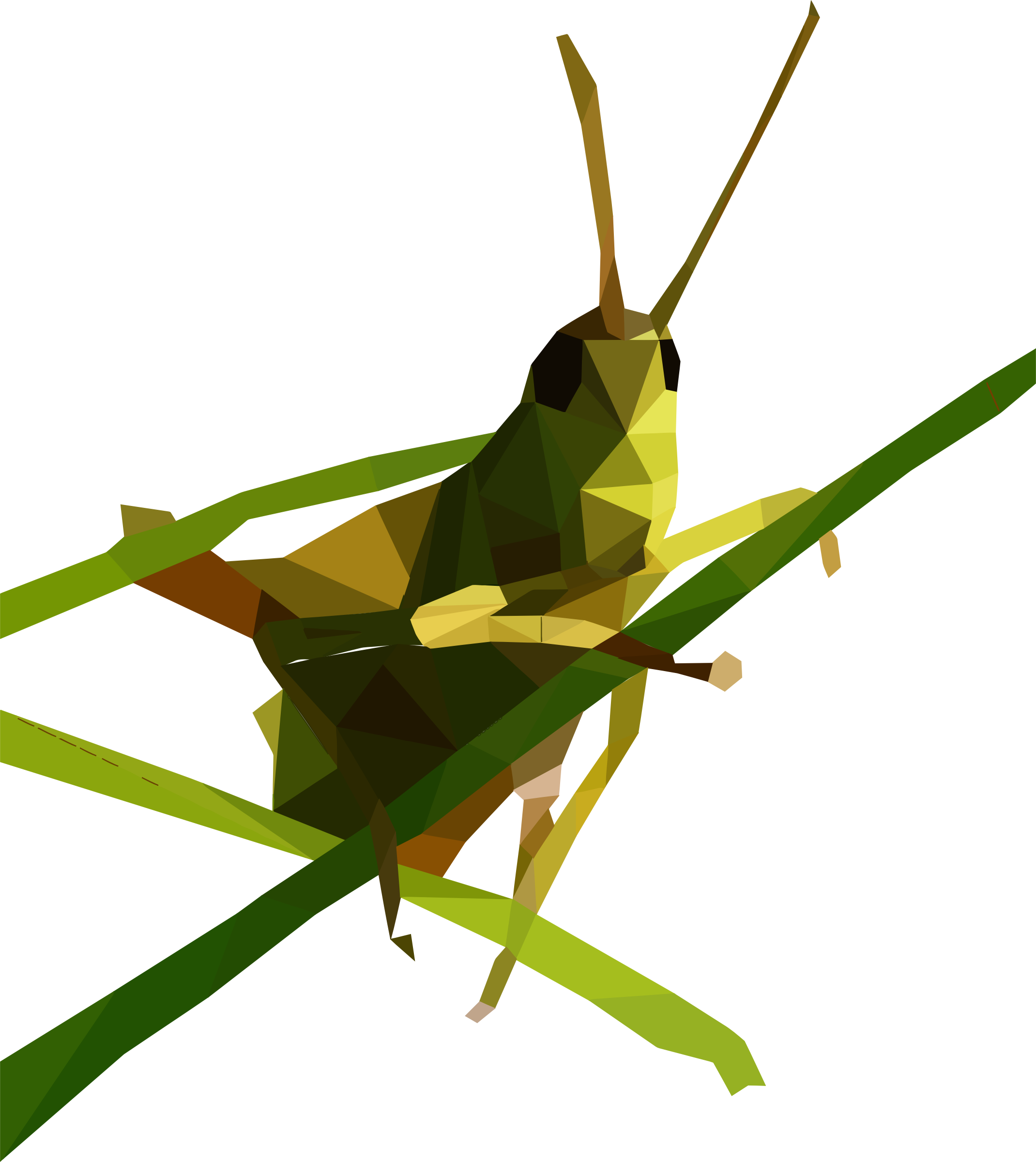 Low Poly Grasshopper by GDJ