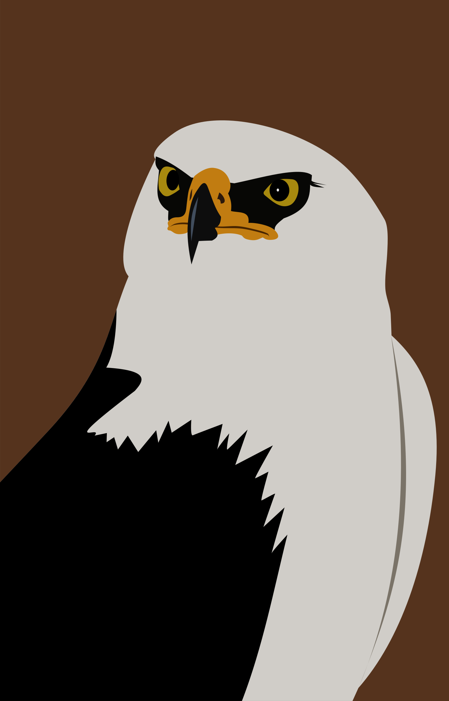 Eagle by Rones by rones