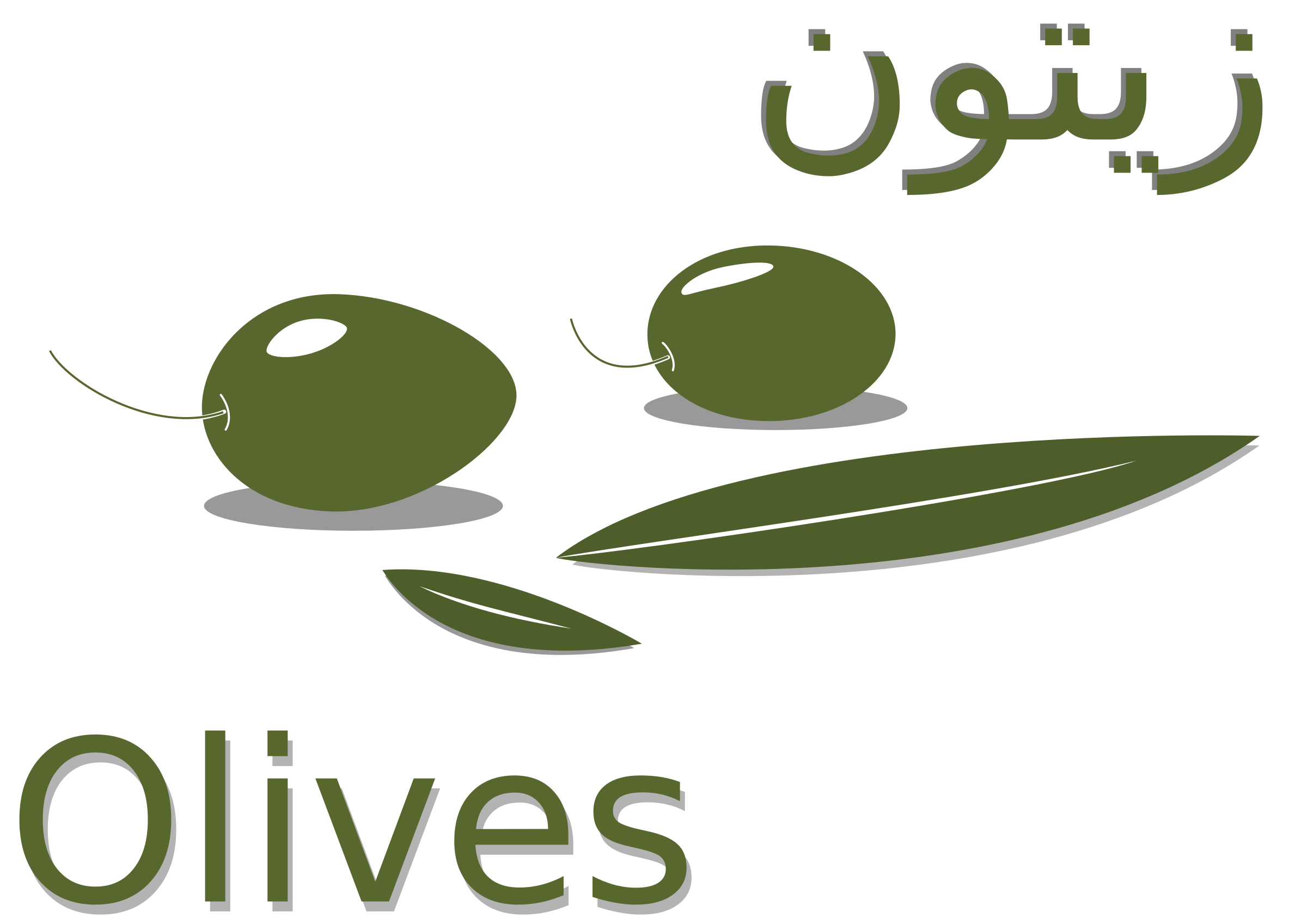 Olive - زيتون by mounir.boukhari