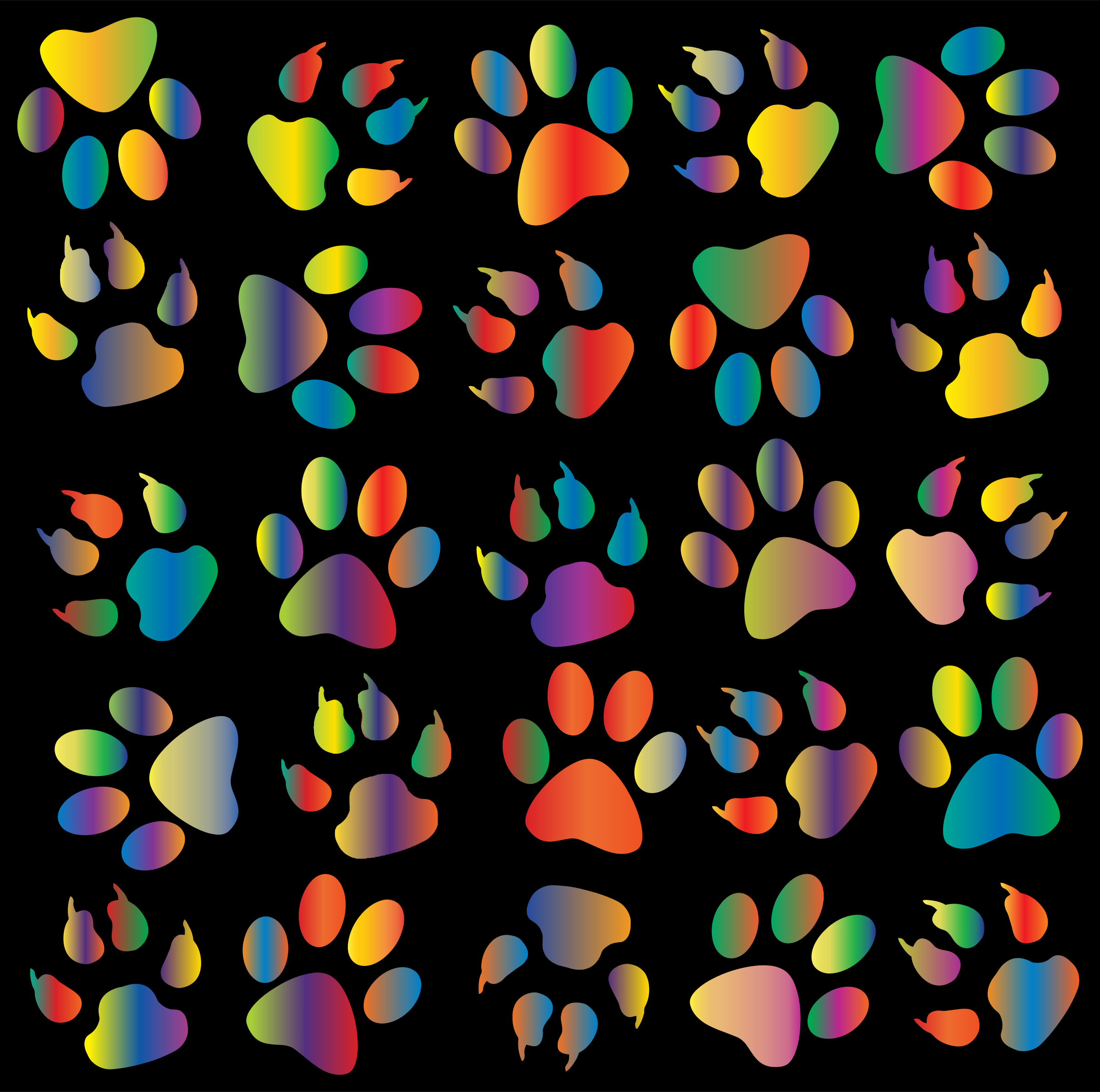 Colorful Paw Prints Pattern Background Reinvigorated 4 by GDJ
